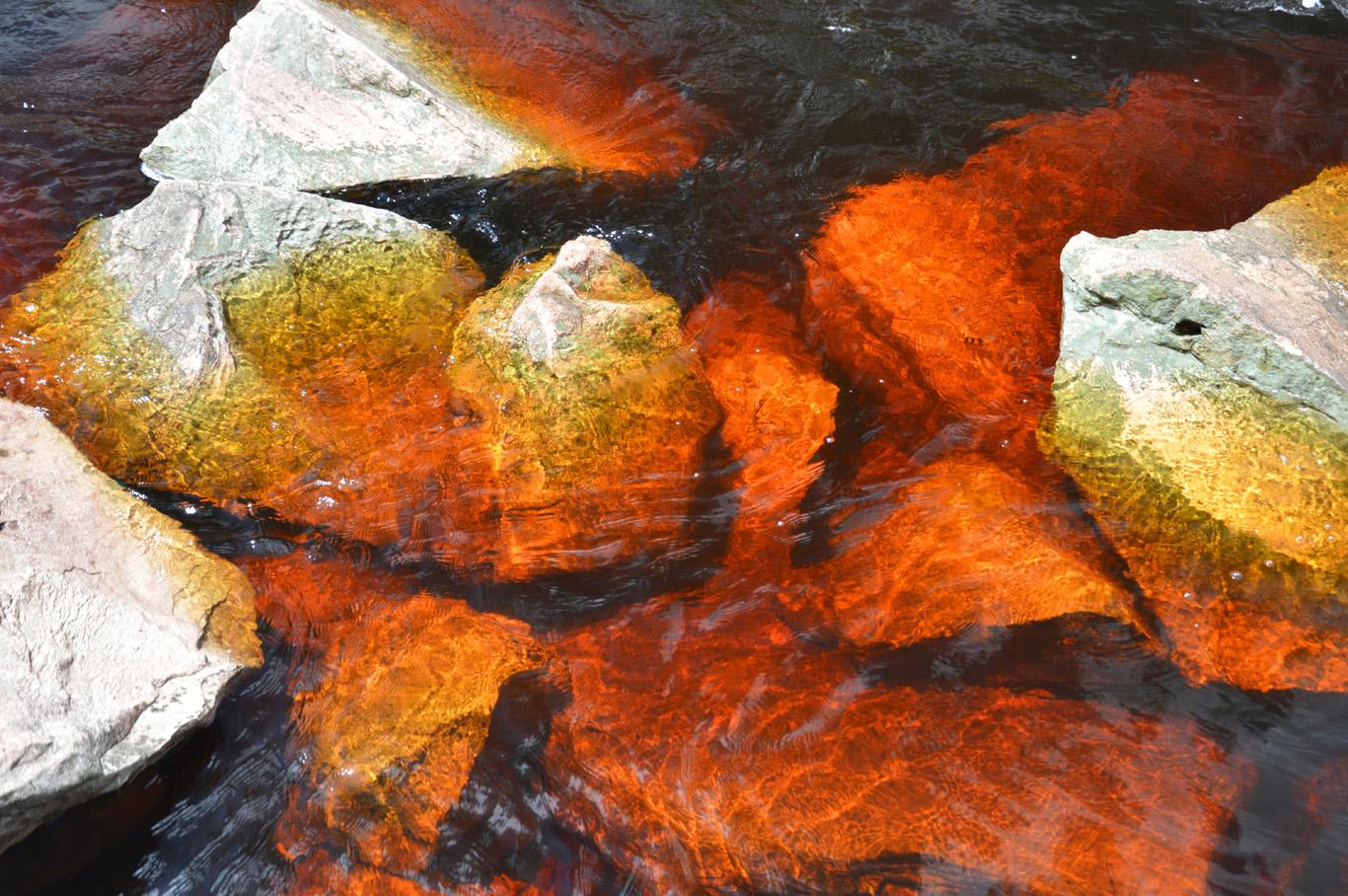 Dark red color of Mucugezinho river