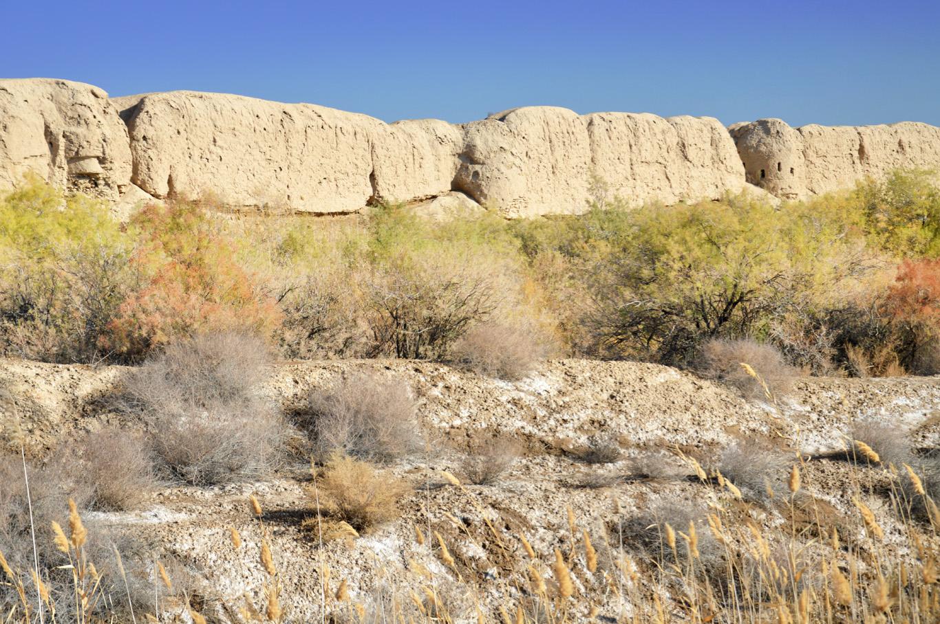 Defensive walls