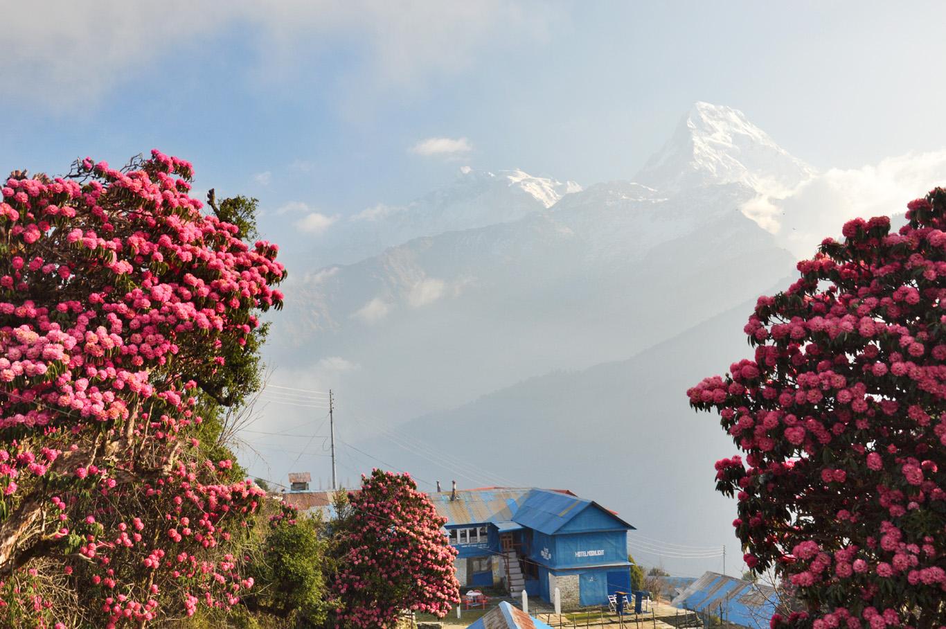 Nepal