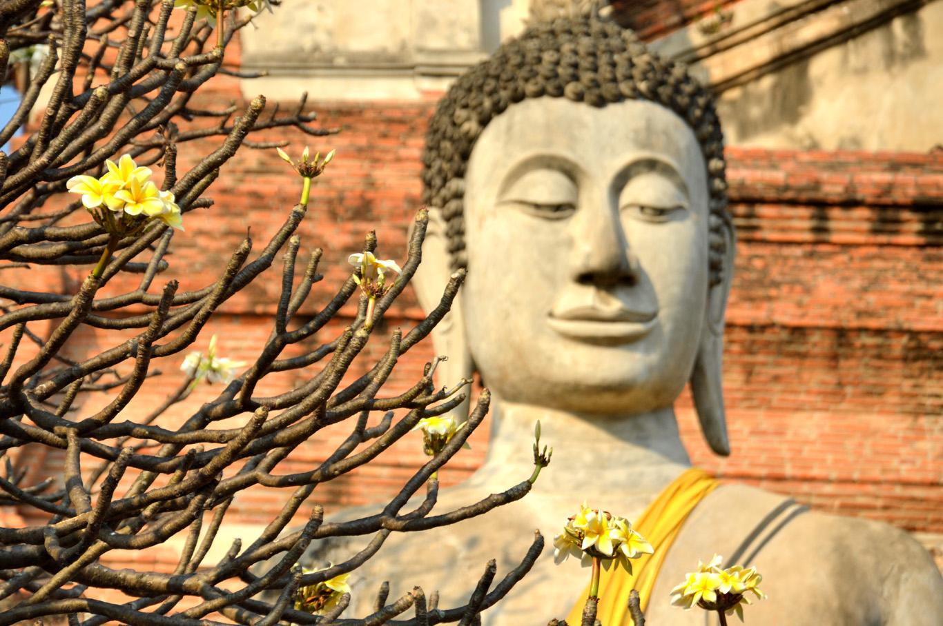 Buddha Statue at Wat Yai Chai Mongkhon
