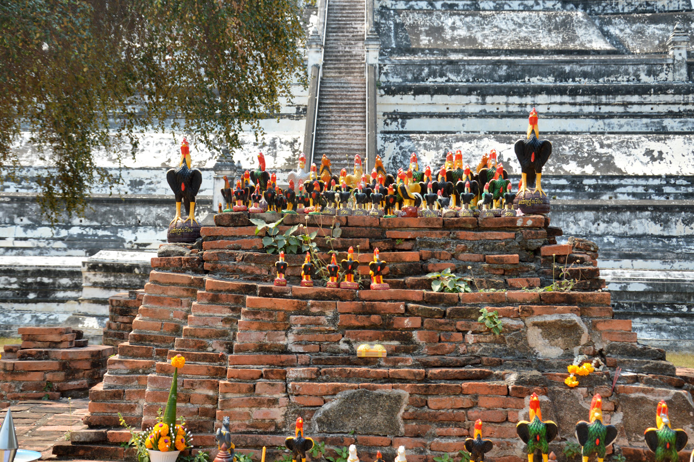 The roosters of Ayutthaya