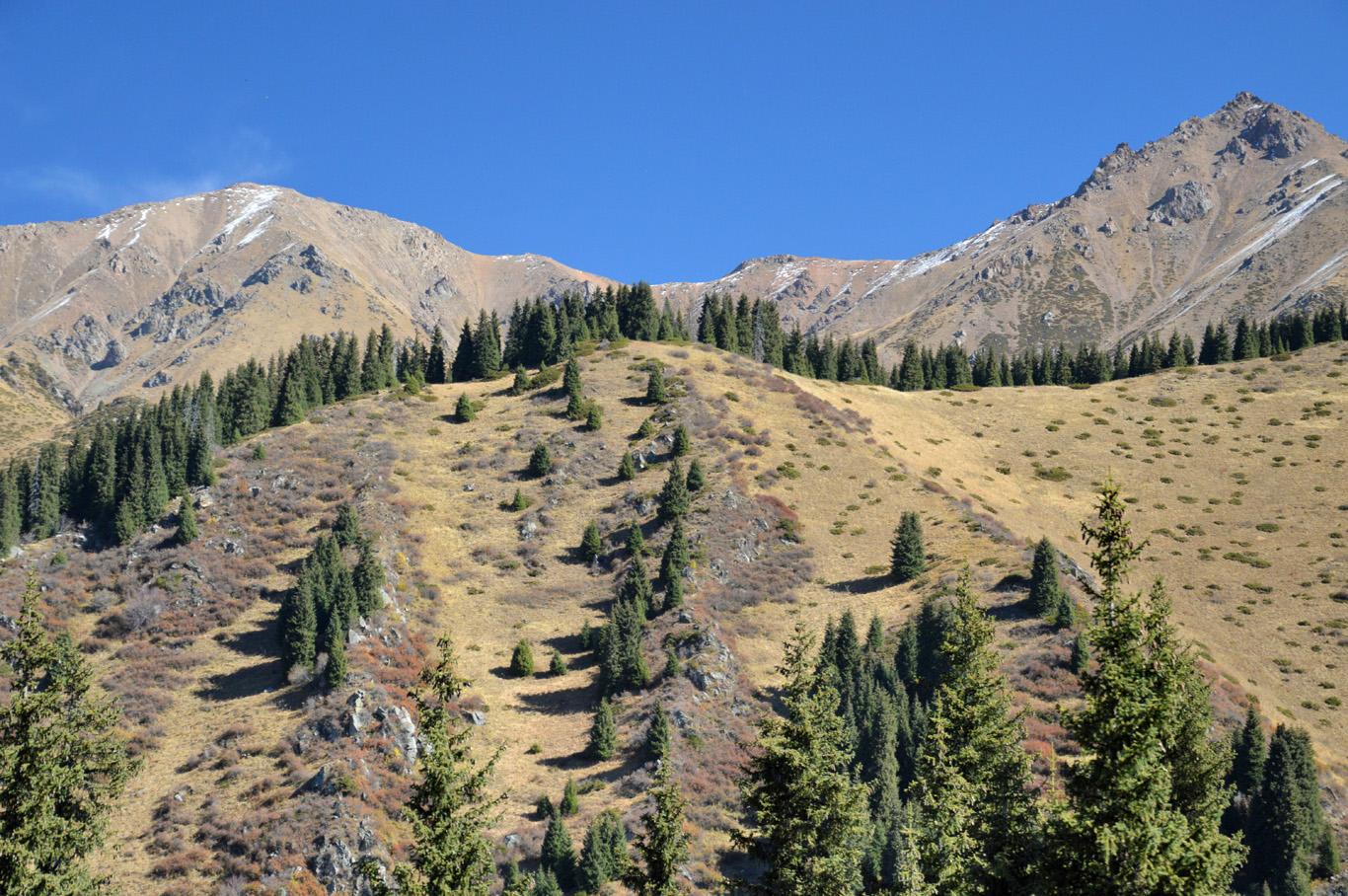Steep mountains near Almaty
