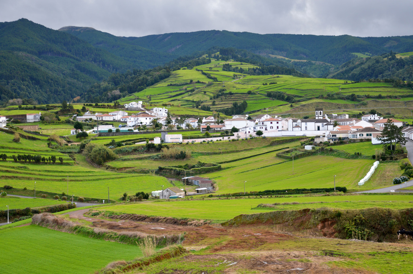 The countryside of Azores