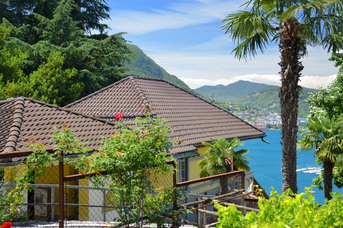 Mediterranean Lugano