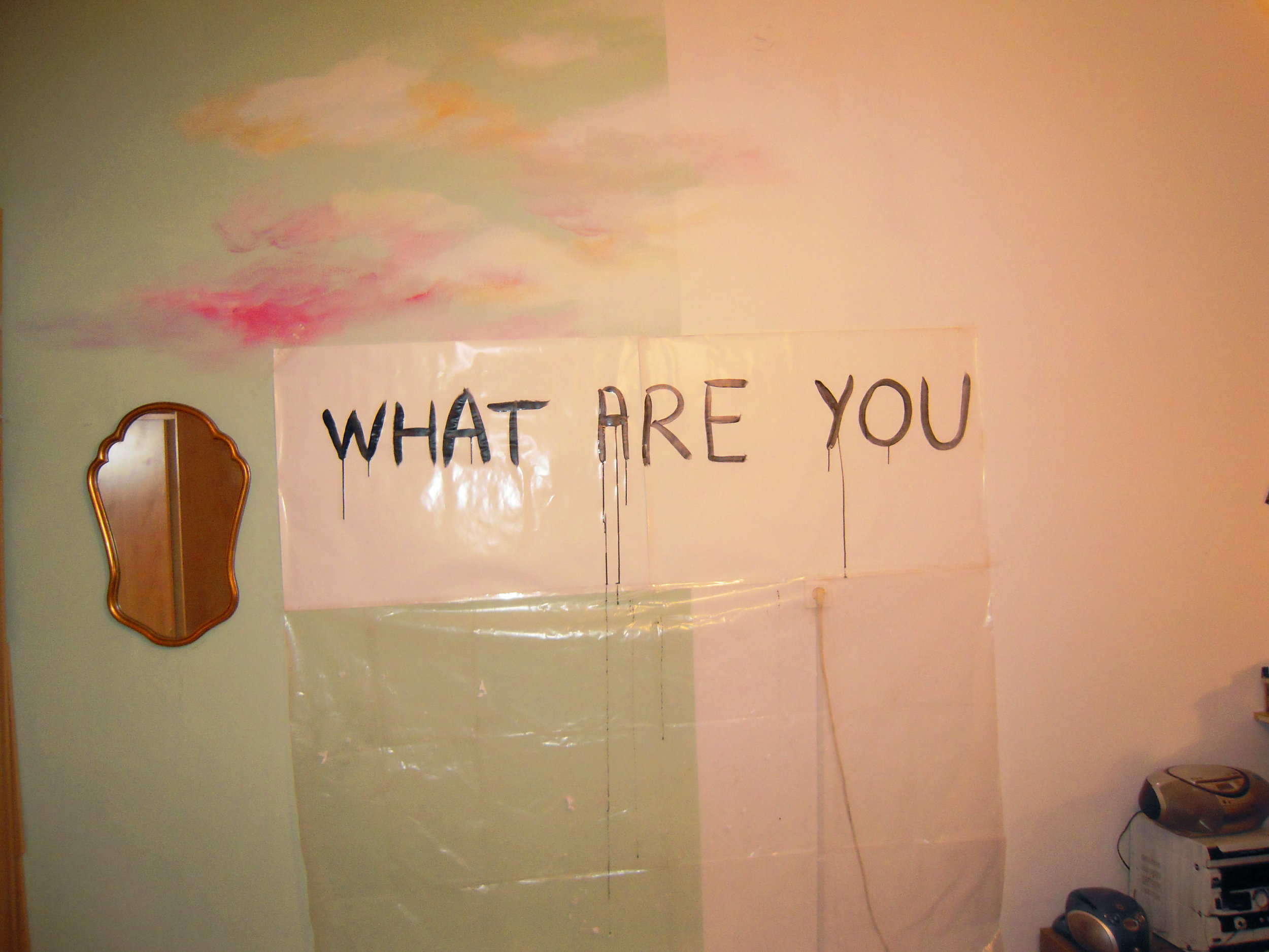 What are you, wallpaintg and installation, Ljubljana, 2015