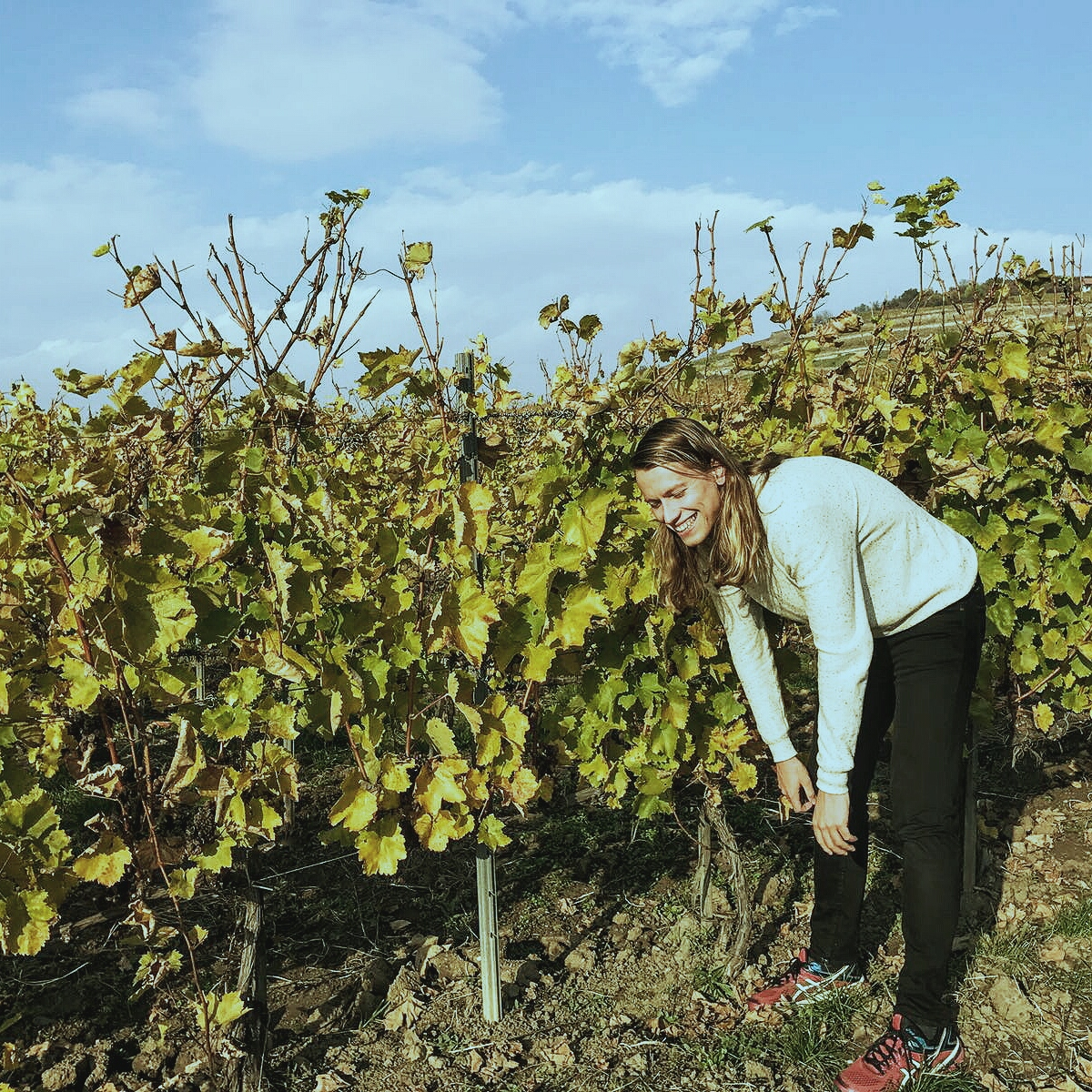 Cracking during a routine vineyard inspection...