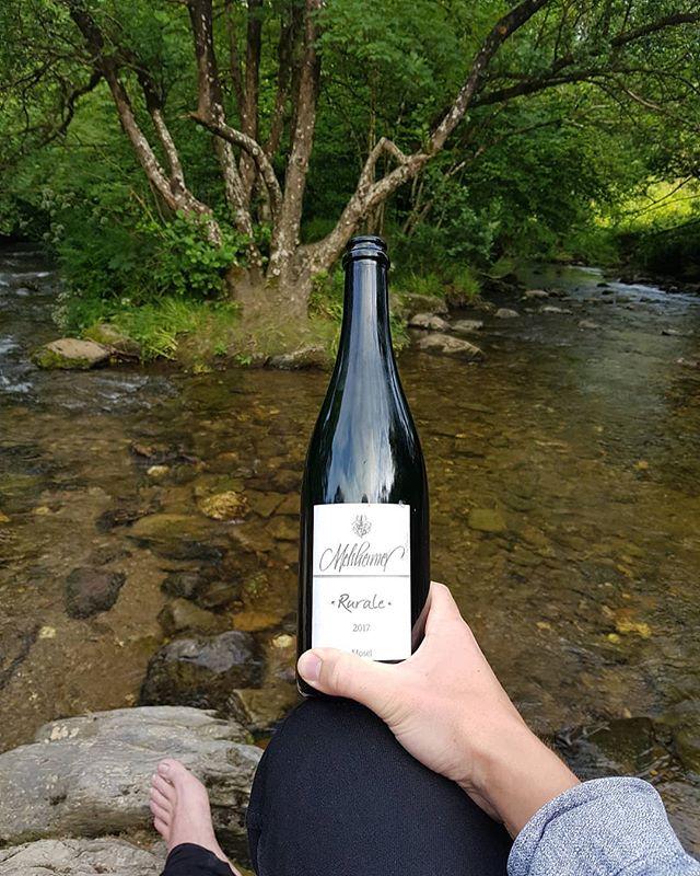 Rurale 🌿🌿🌿, cracking pet nat Riesling from the boss Thorsten . . . . .  #riesling #melsheimer #petnat #rural #exmoor #winedog #winedoguk #wineman #tasting #degustation #finewine #wine #winetasting #winestagram #wineporn