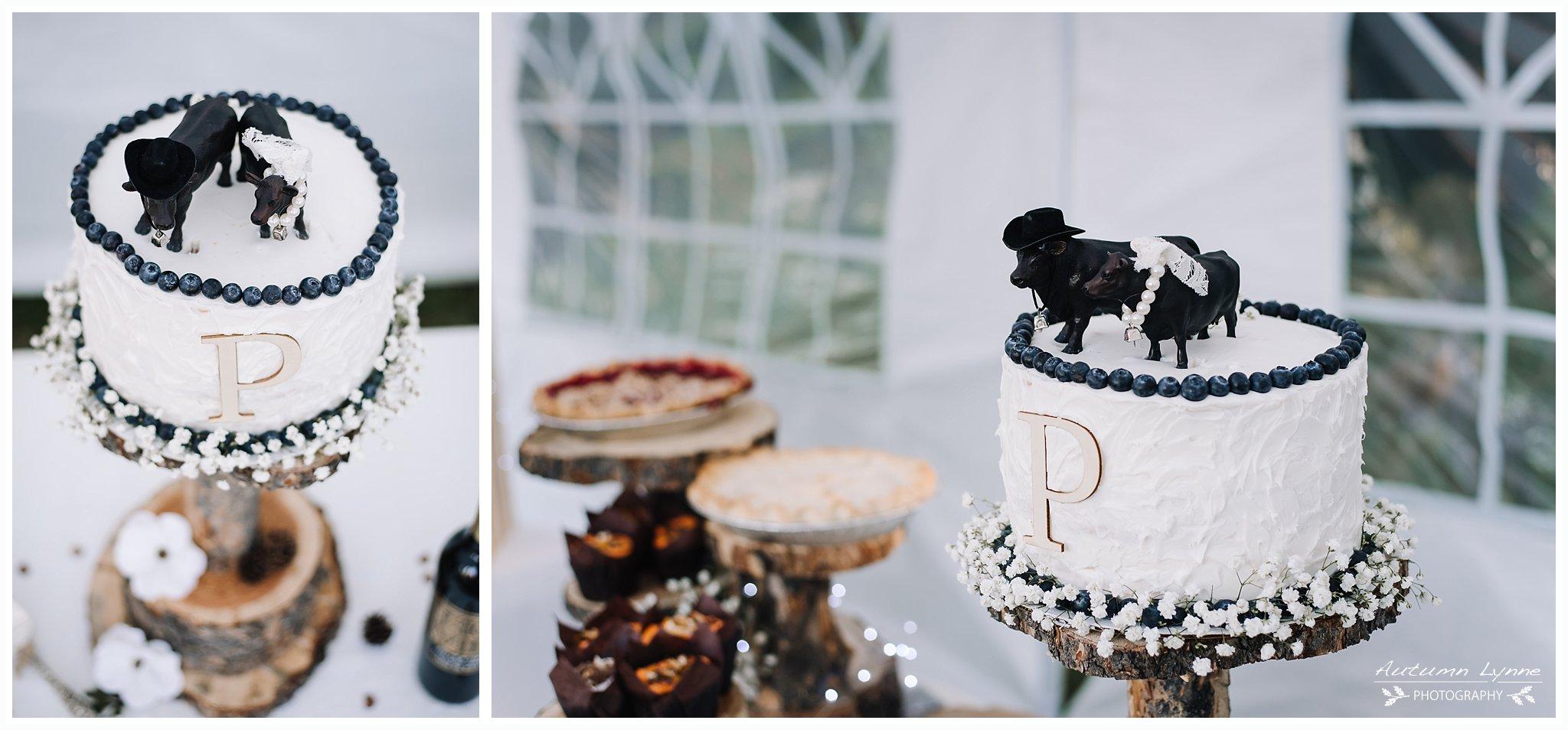 wedding cake details. Cow cake topper with blueberry edging. Country wedding cake.Idaho wedding photographers