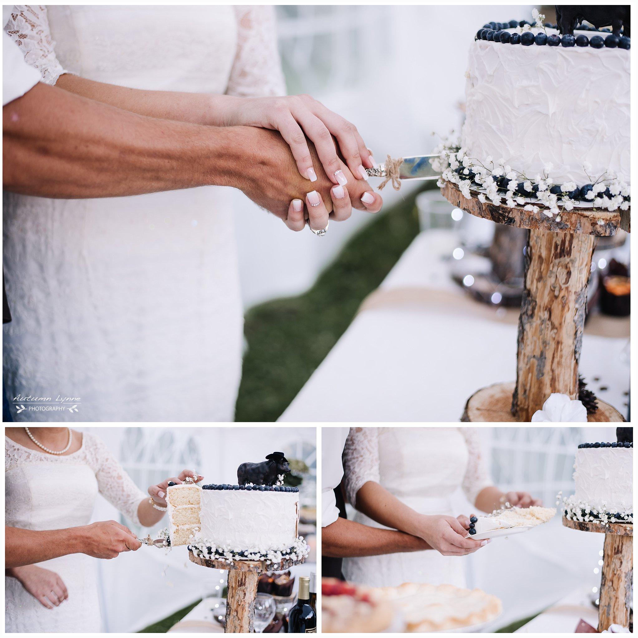 wedding Cake cutting. blueberry wedding cake