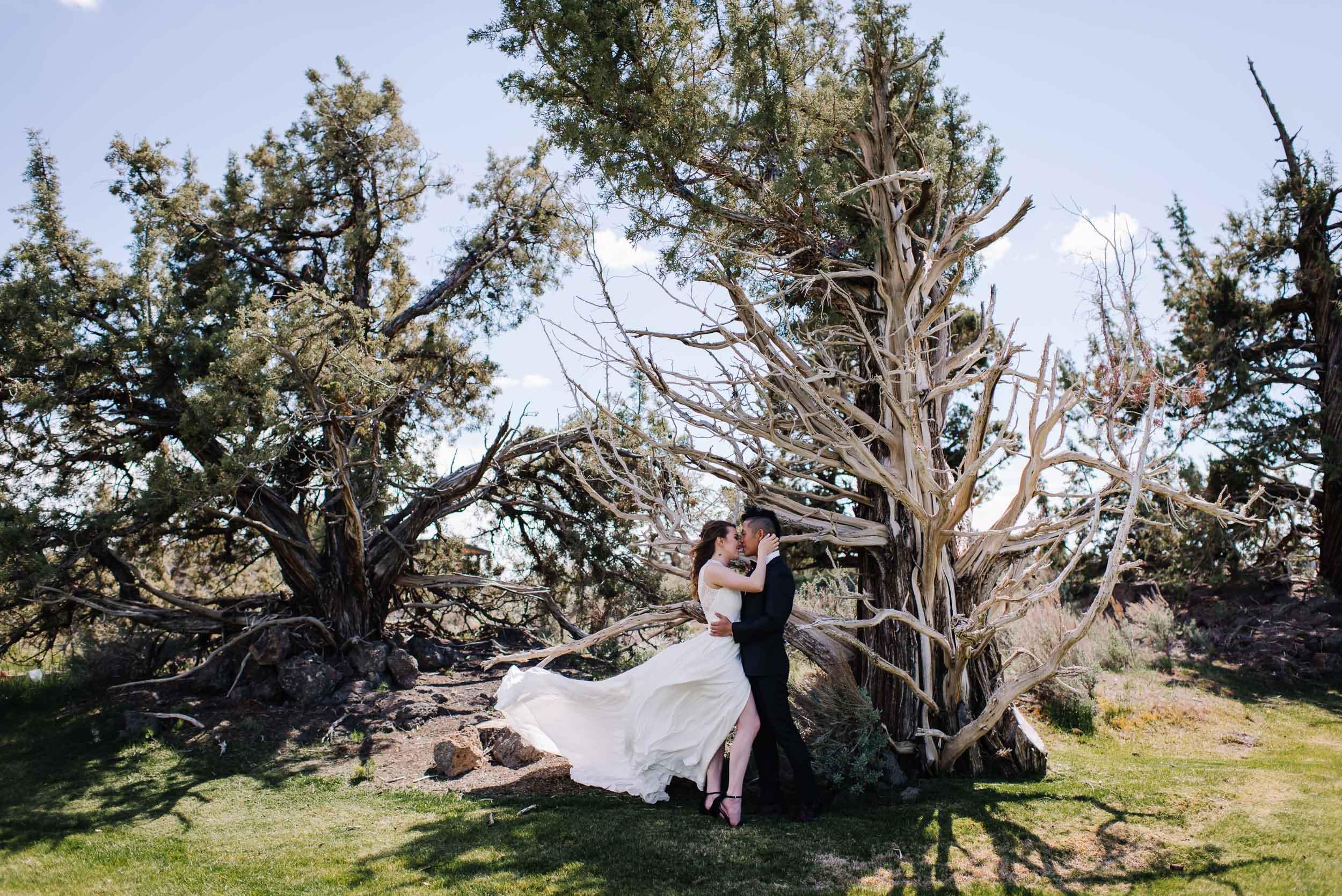 Idaho-elopement-photographer-couple-under-tree.jpg