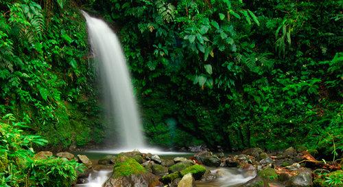 200 hour ytt near hiking and waterfalls