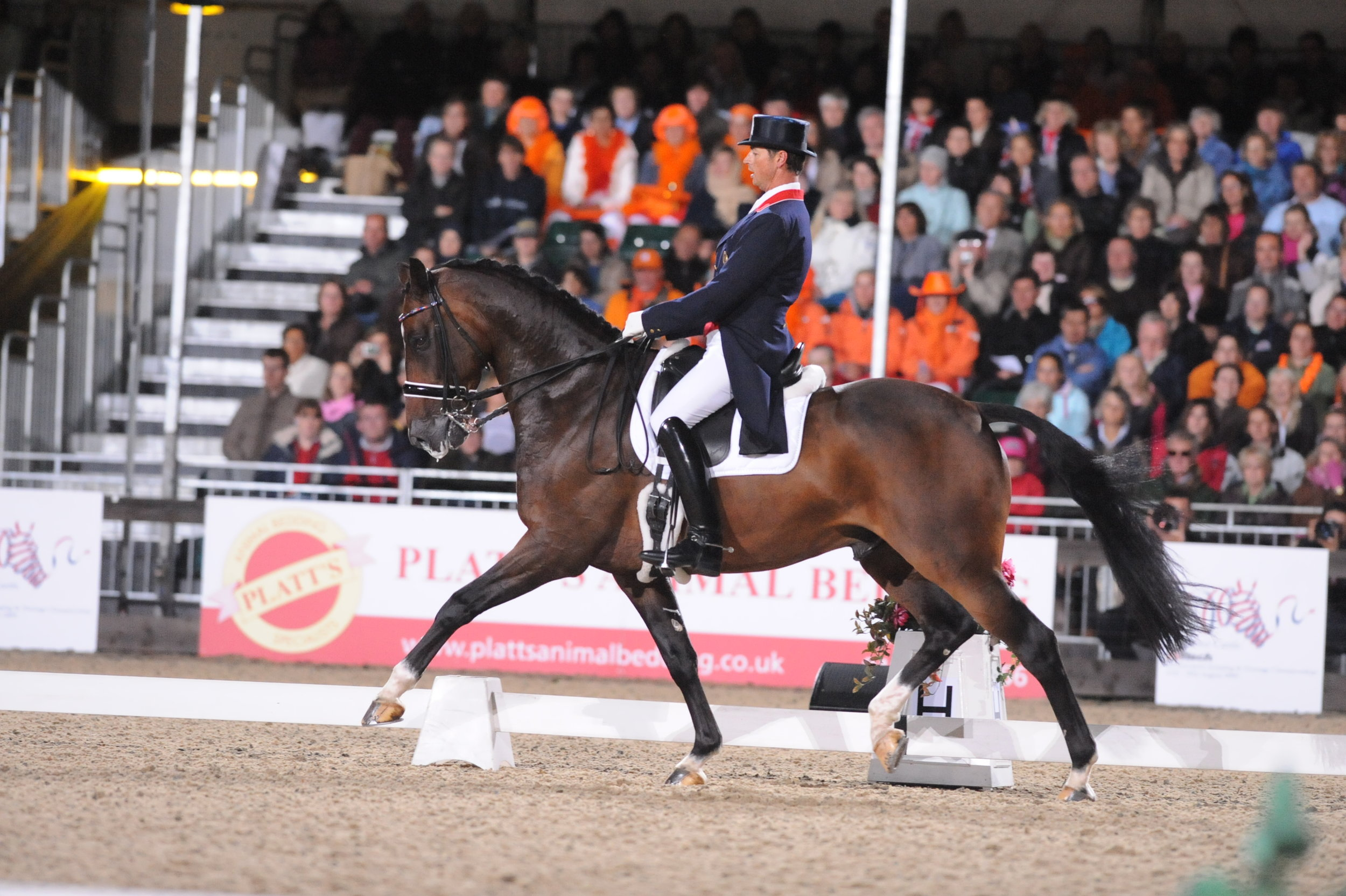 Carl Hester and Liebling European Championships 2009.JPG