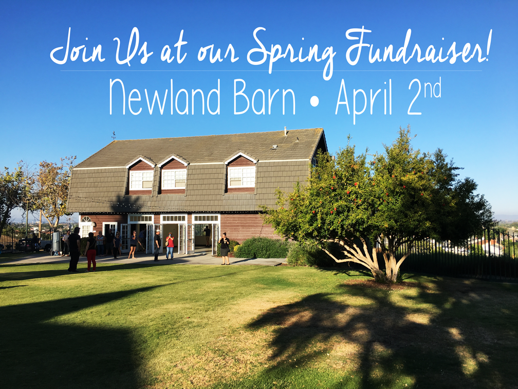 Three months from now, we'll be joining together with members of the community to escalate our efforts to make Loveland Farm Sanctuary a reality for farm animals in dire need of rescue. Please consider joining us at the Newland Barn in Huntington Beach on April 2nd to help abused and neglected animals who need us now more than ever.