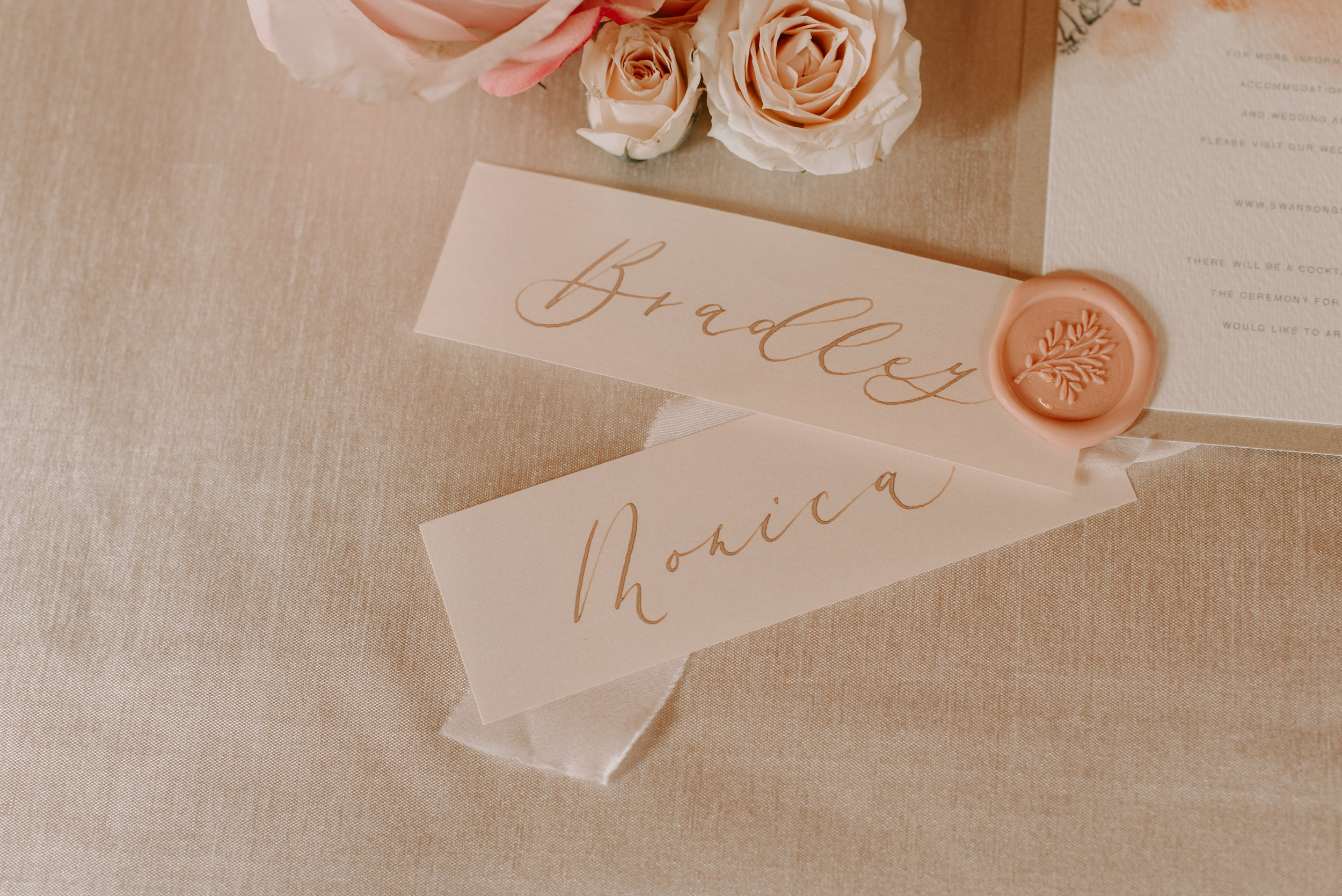 Copy of Copy of Wedding Details: Place cards, Letters & Dust