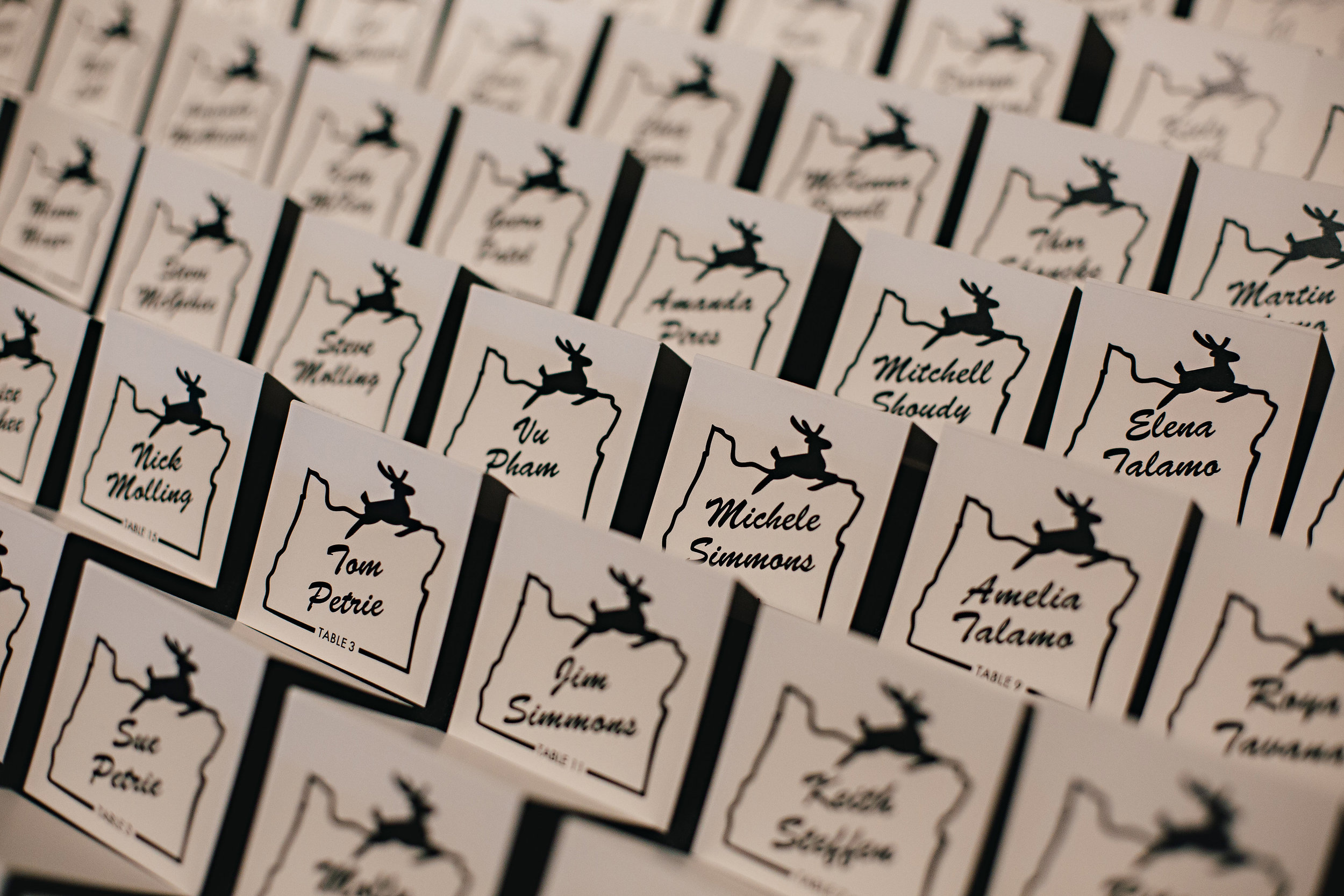 The couples logo used for the escort cards