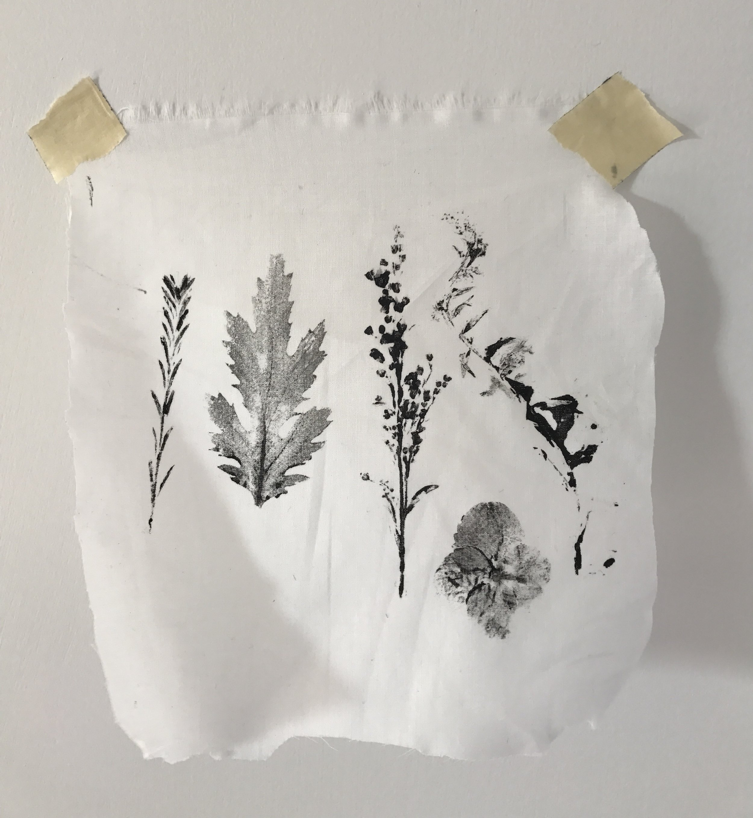 Developing a print with live flowers.