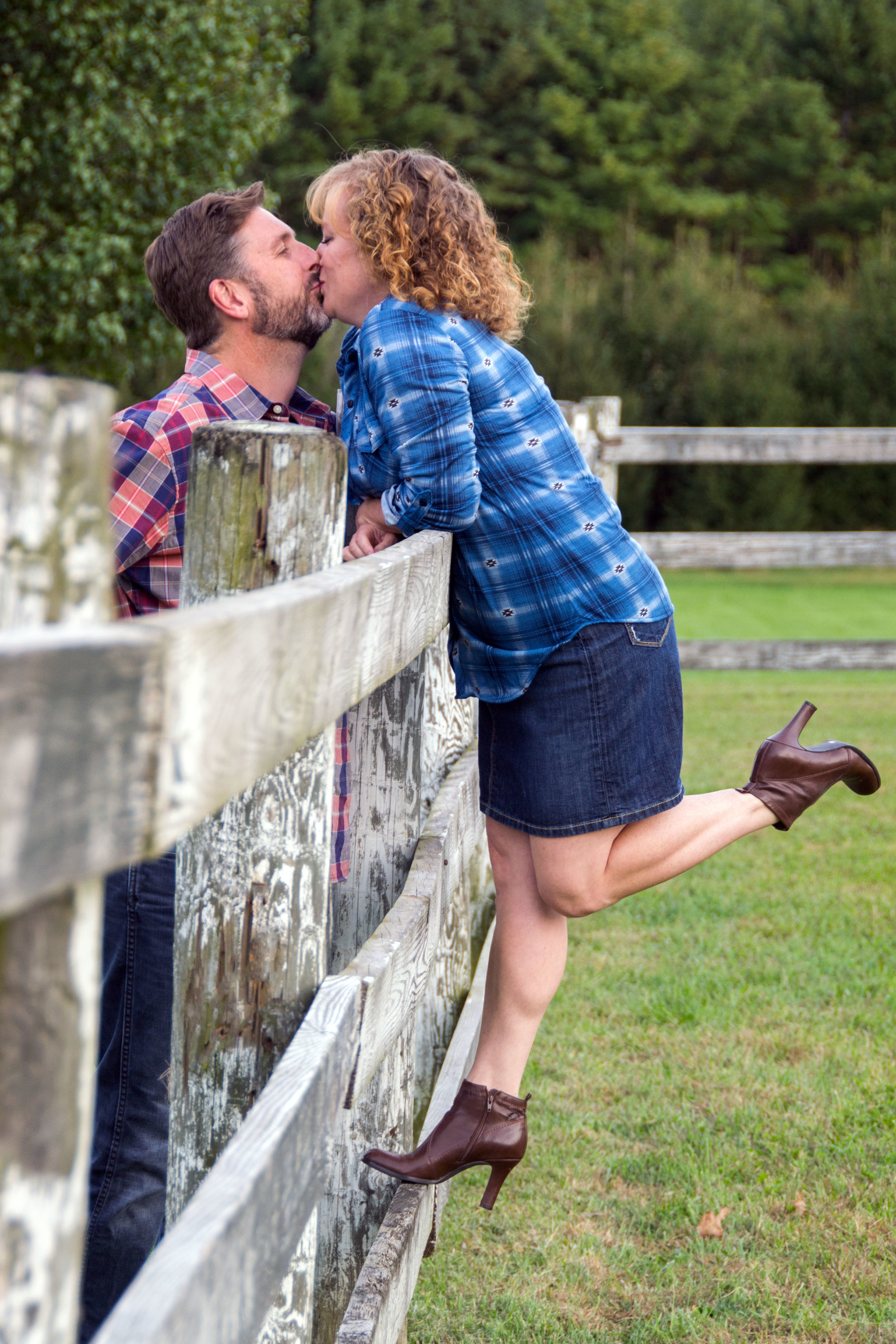 kissing over the fence.jpg