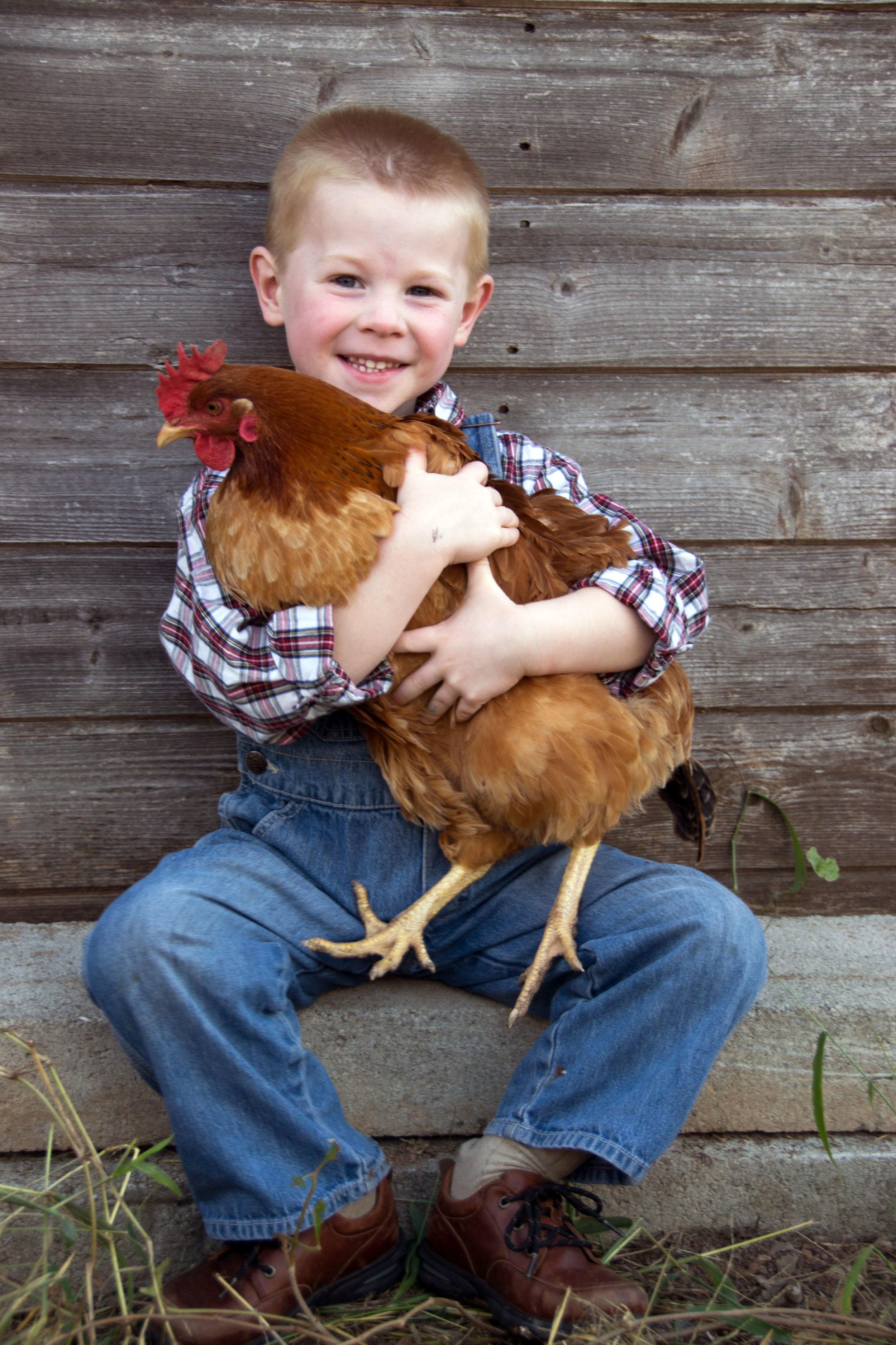 hudson with chicken.jpg