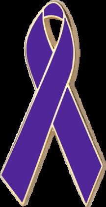 Purple Awareness Ribbon Pin