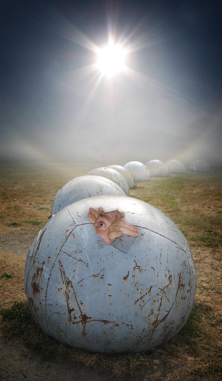 incubation.jpg