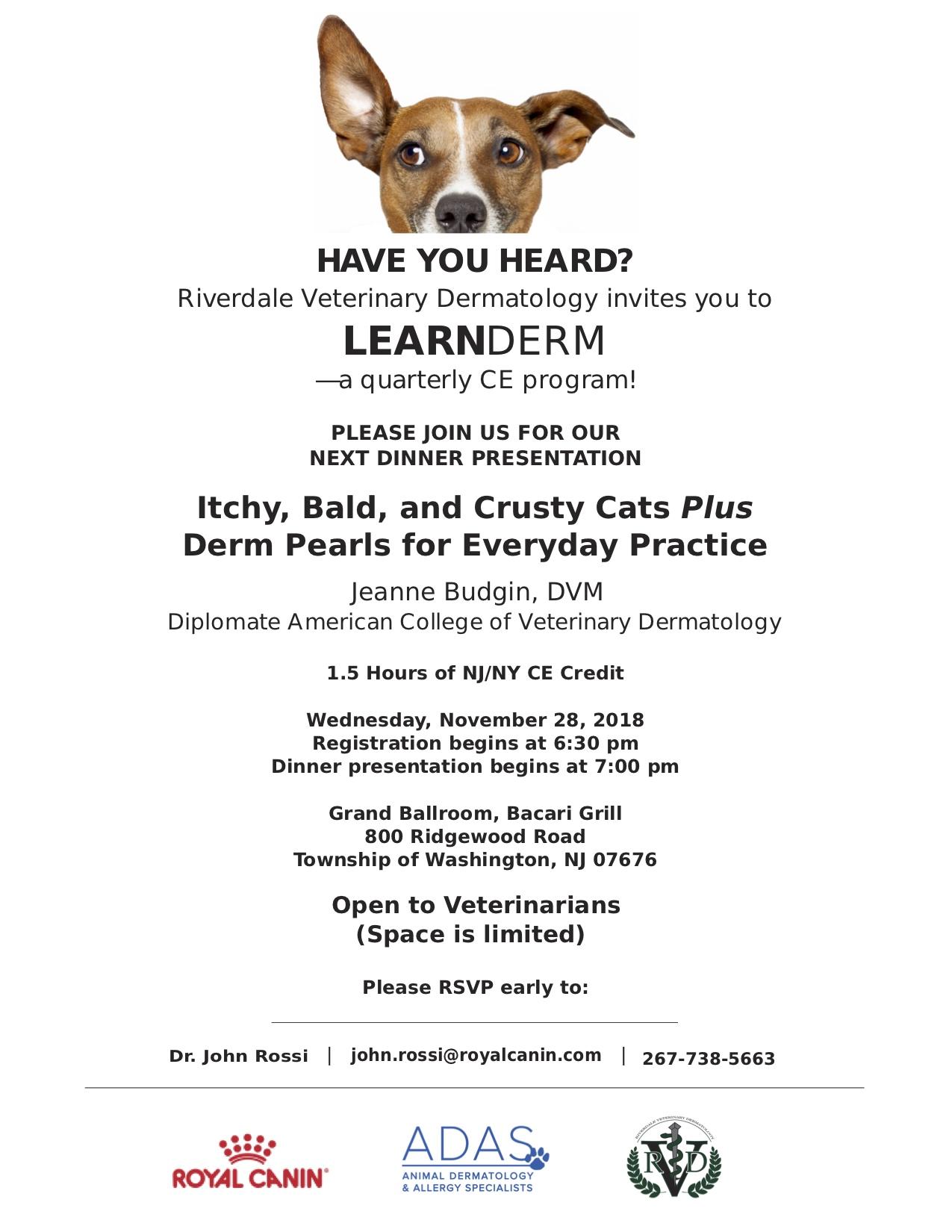 LearnDerm 11.28.18 invite.jpg