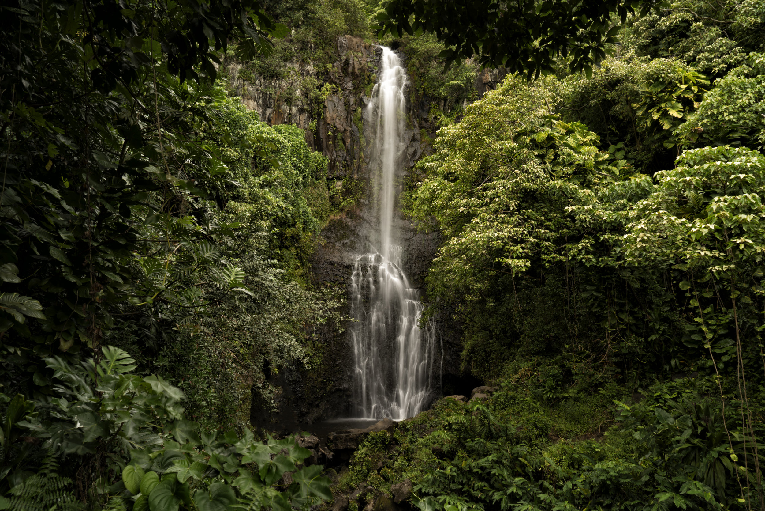 Maui November 2015