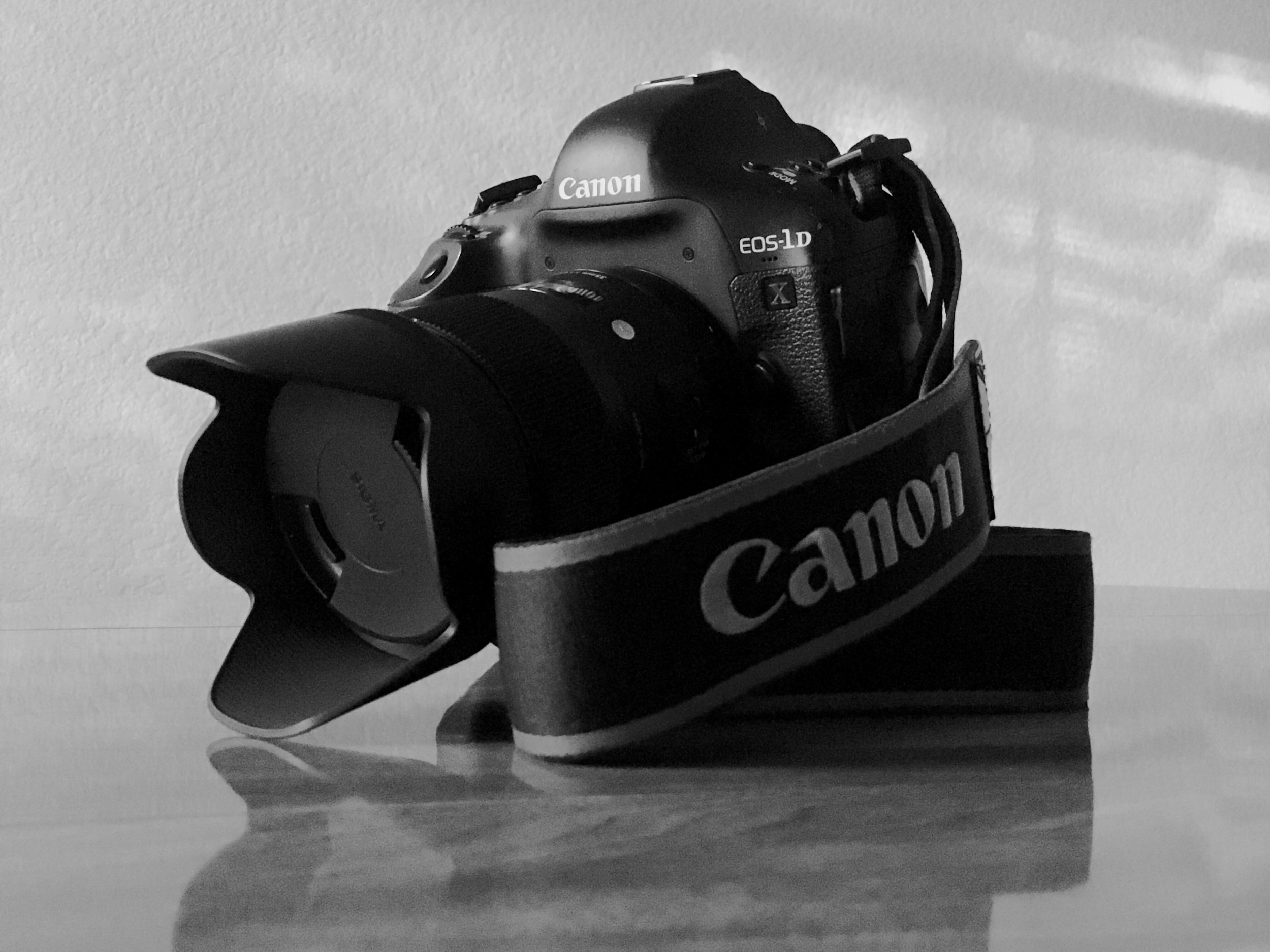 1 Year with the Canon 1Dx - A comprehensive review of a demanding first year with the legendary Canon 1Dx