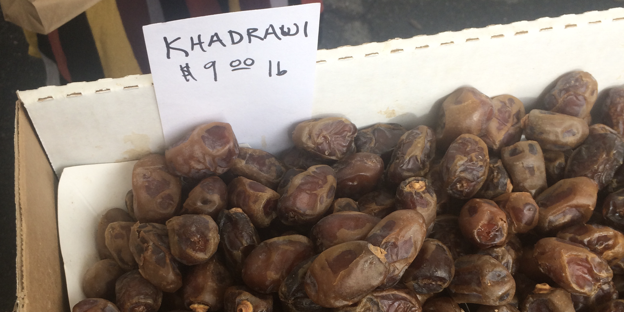 Khadrawi Dates Flying Disc Ranch Basking in Goodness