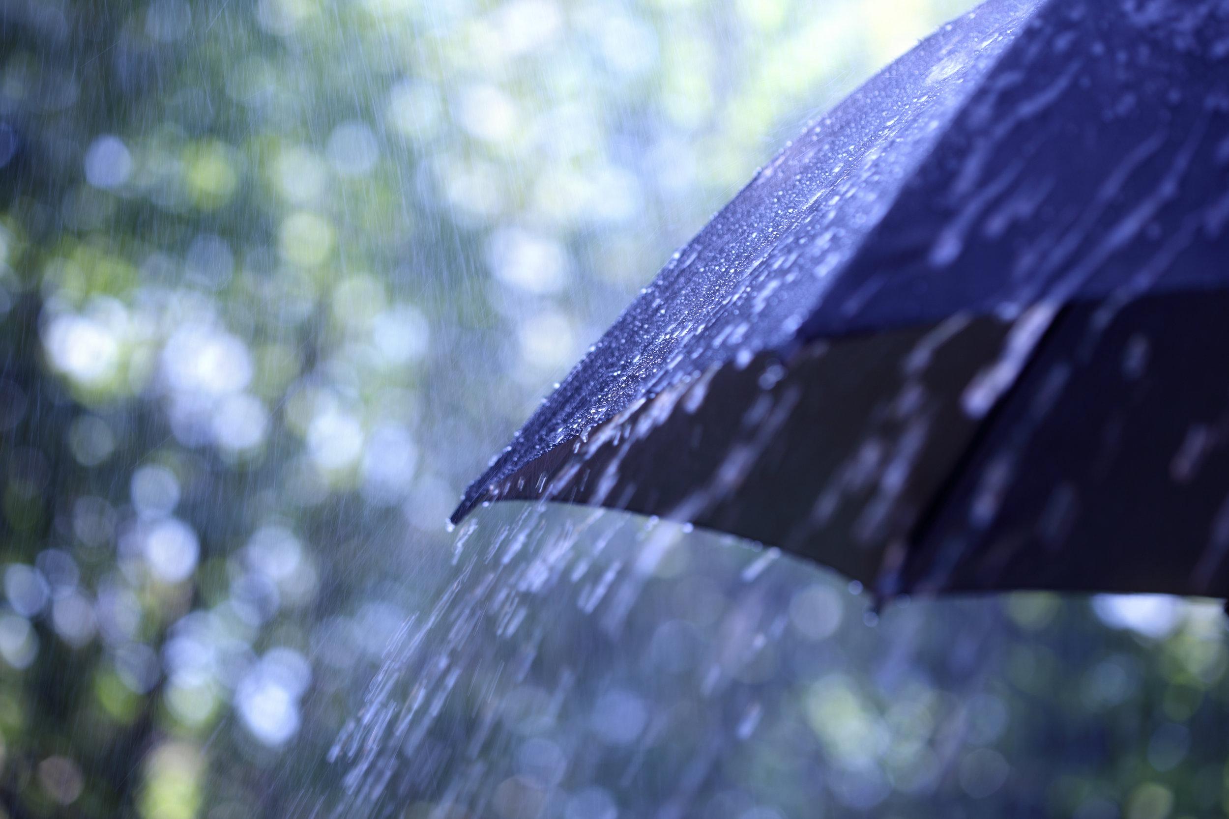 Rain on umbrella-1.jpg