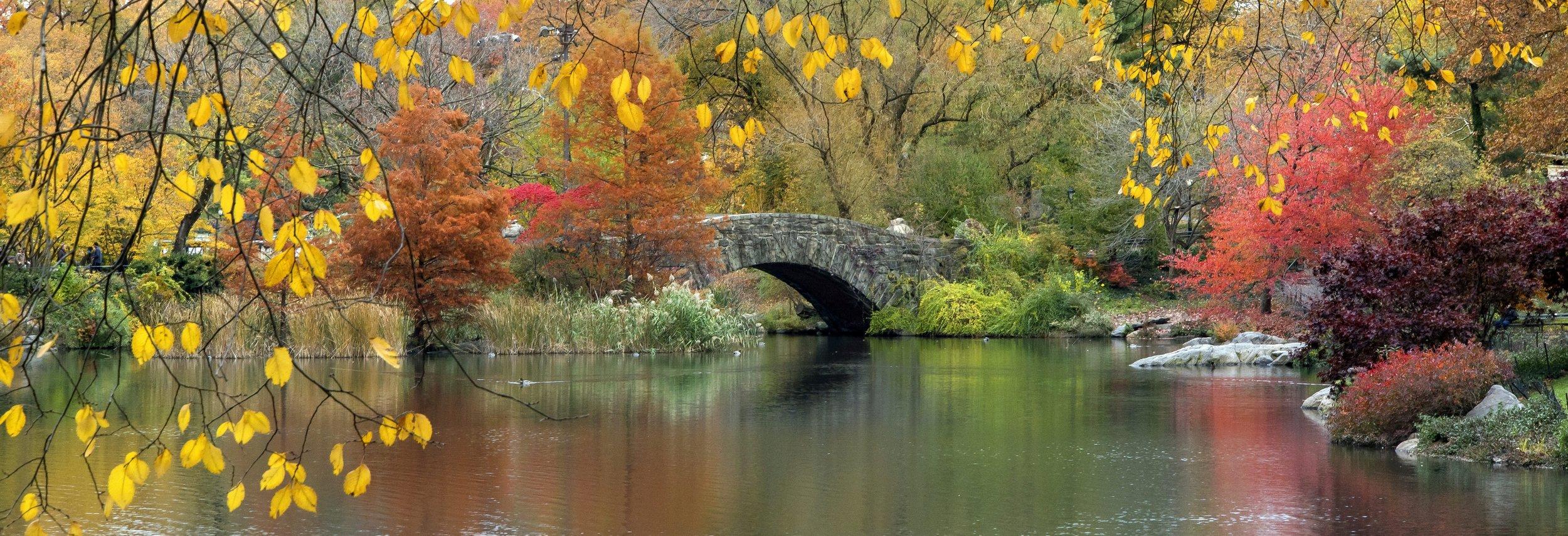 stone bridge river.jpg
