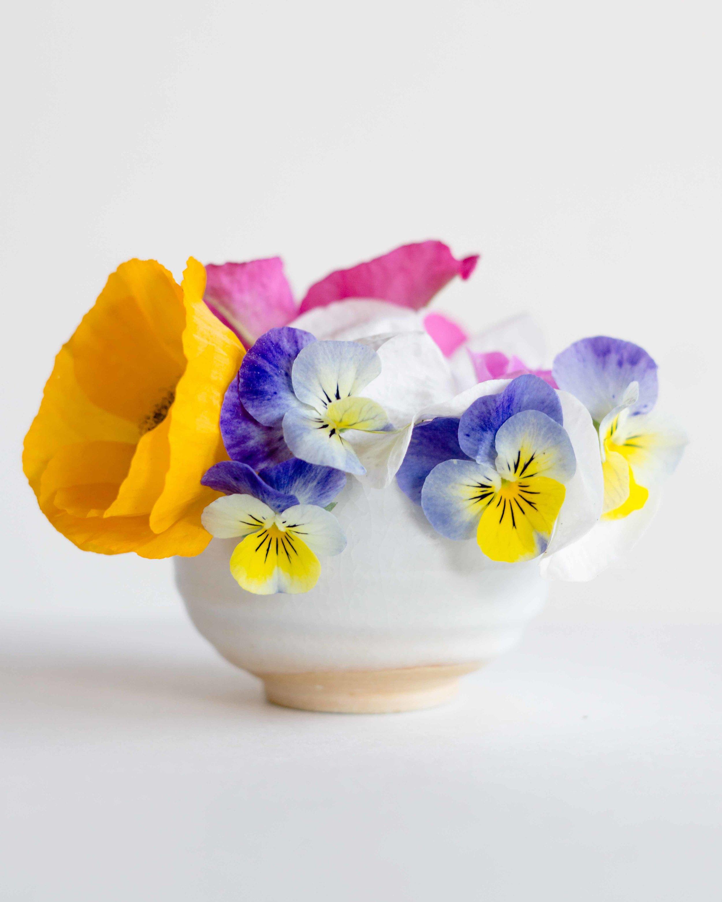 FlowerPowers123.jpg