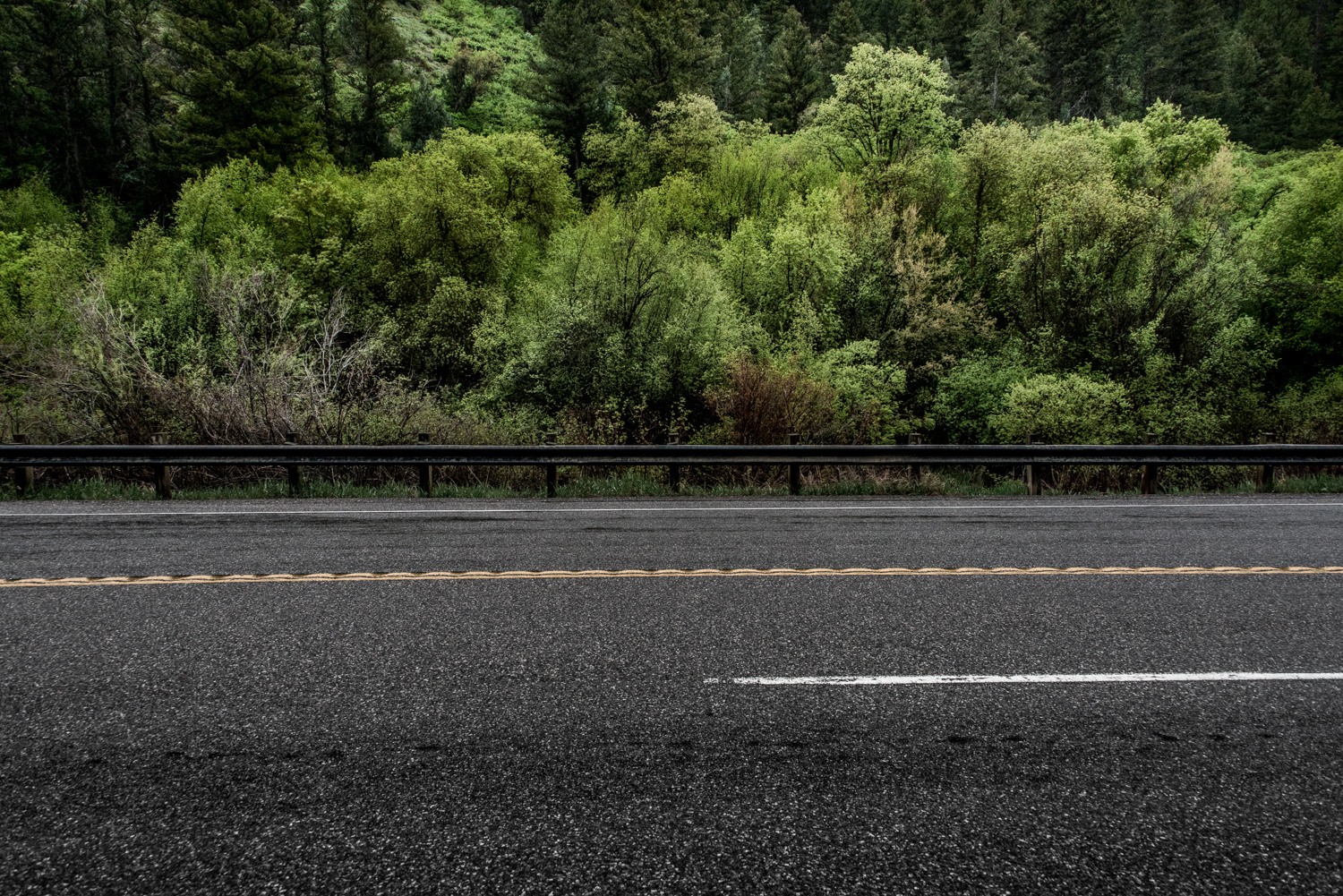 Guardrail, Logan Canyon, Utah, © Robert Welkie
