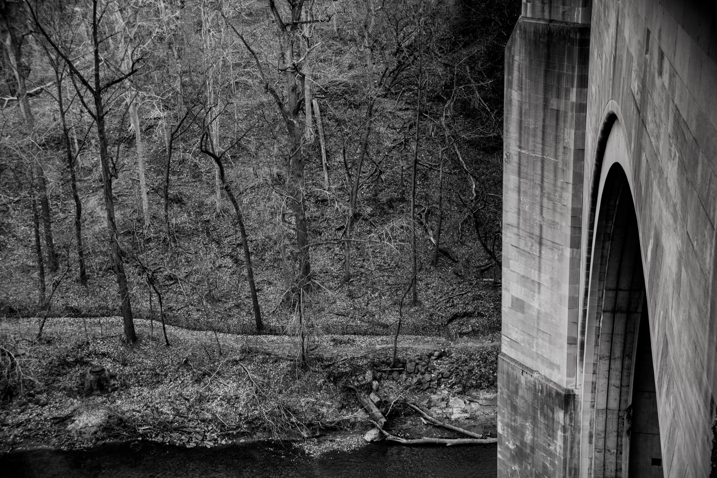 Bridge at Rock Creek Park, Washington D. C. © Robert Welkie 2016