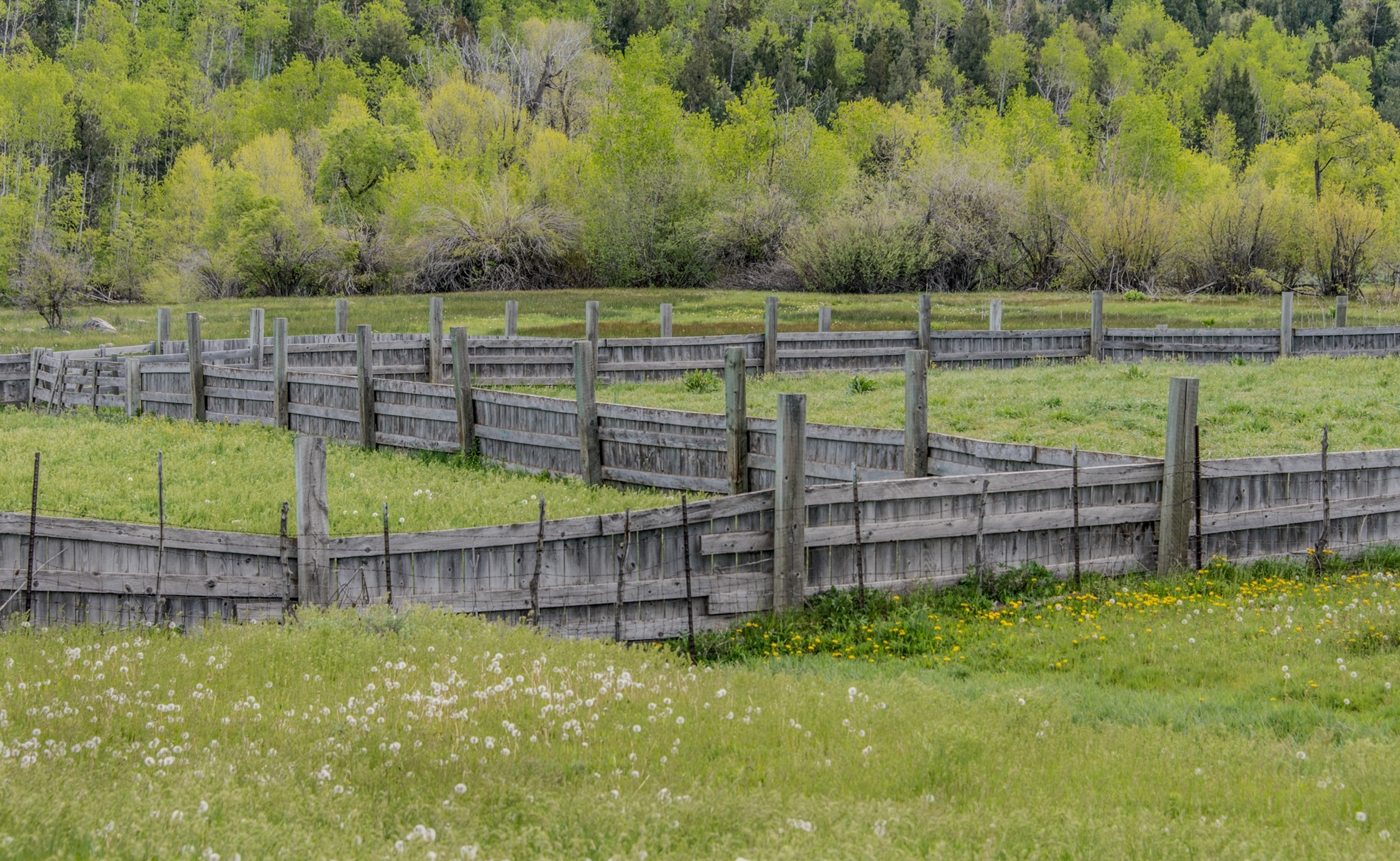 Corral Near Eden, Utah © Robert Welkie 2017