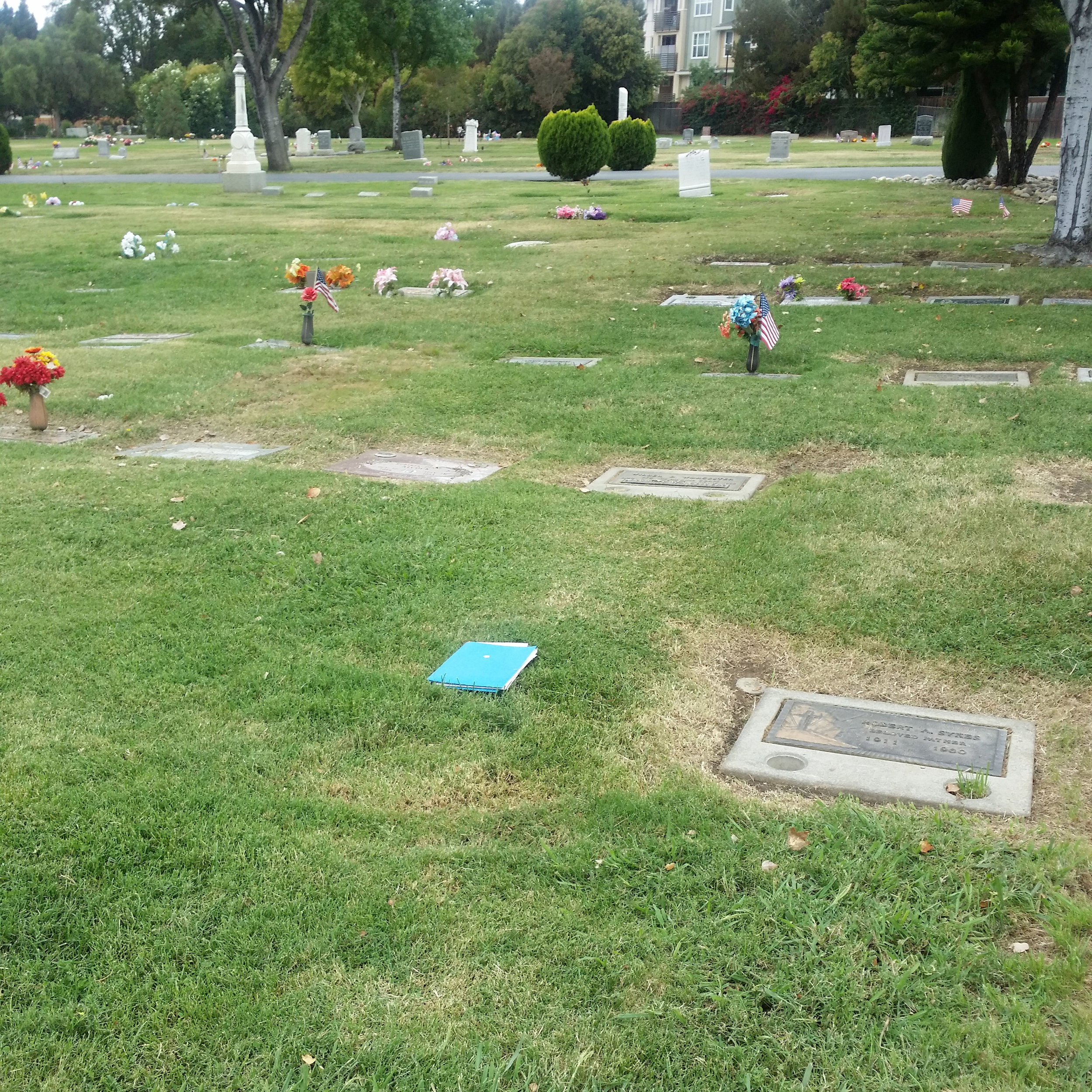 Daniel Cameron's unmarked gravesite. Blue notebook is on the location