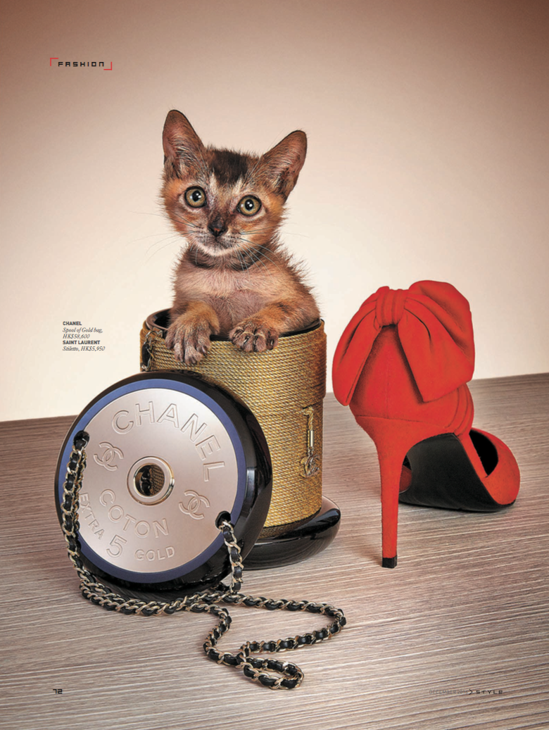 news_JC de Marcos_SCMP Kittens_ 2.png
