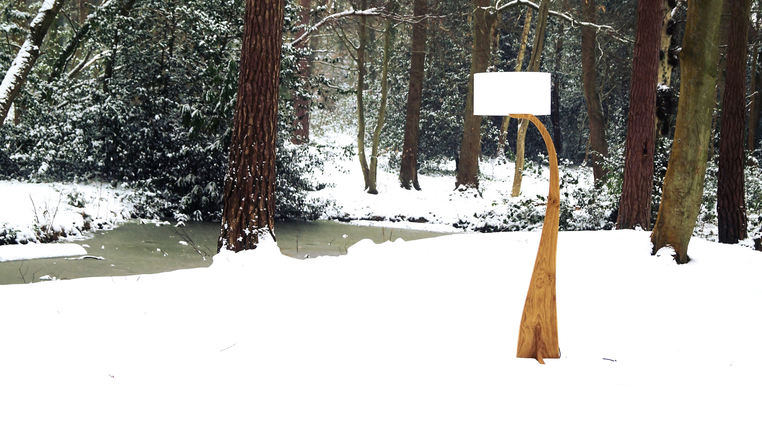 Flow snow w2-.jpg