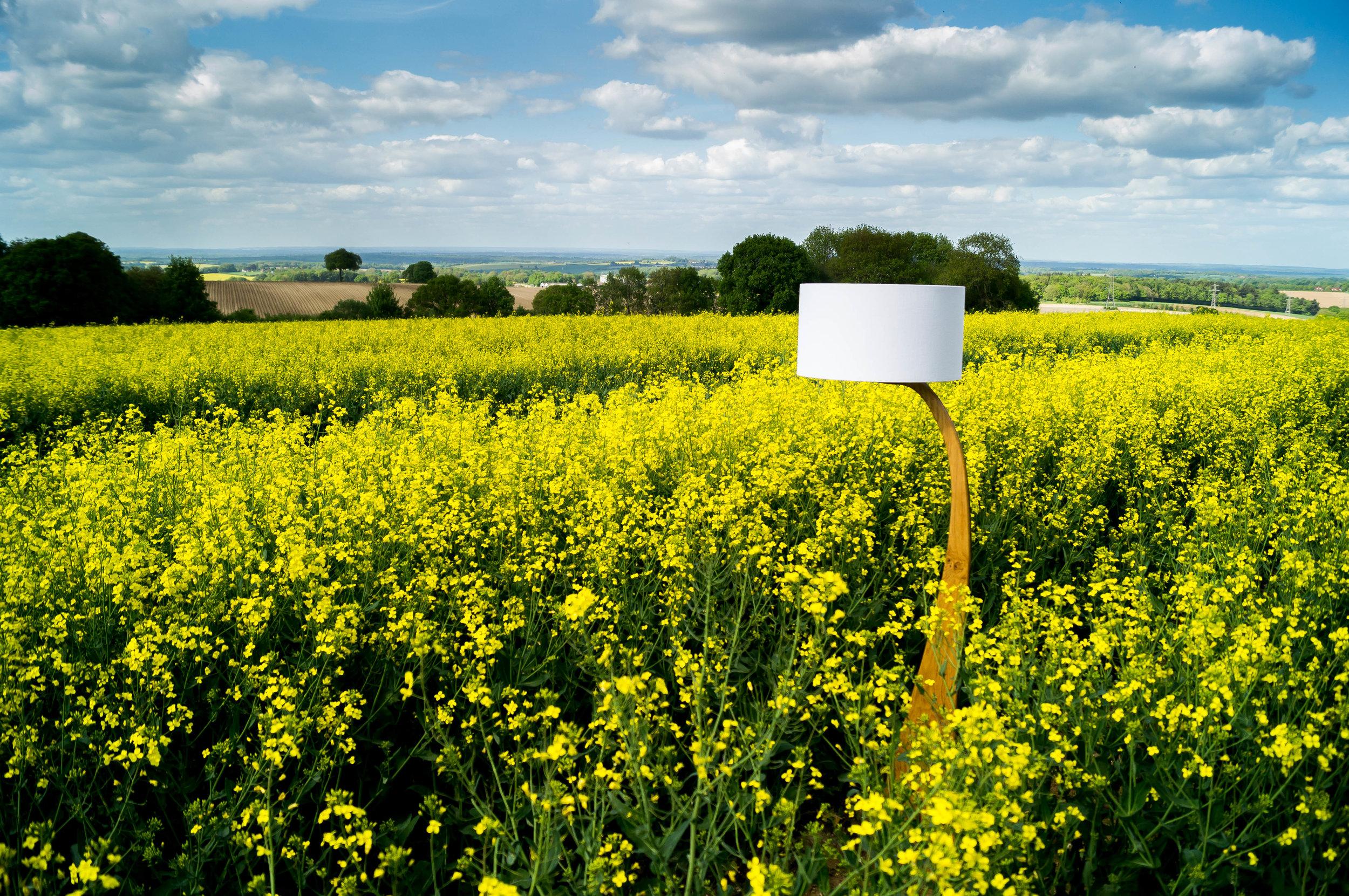 Rapeseed Flow lamp 2 2.jpg