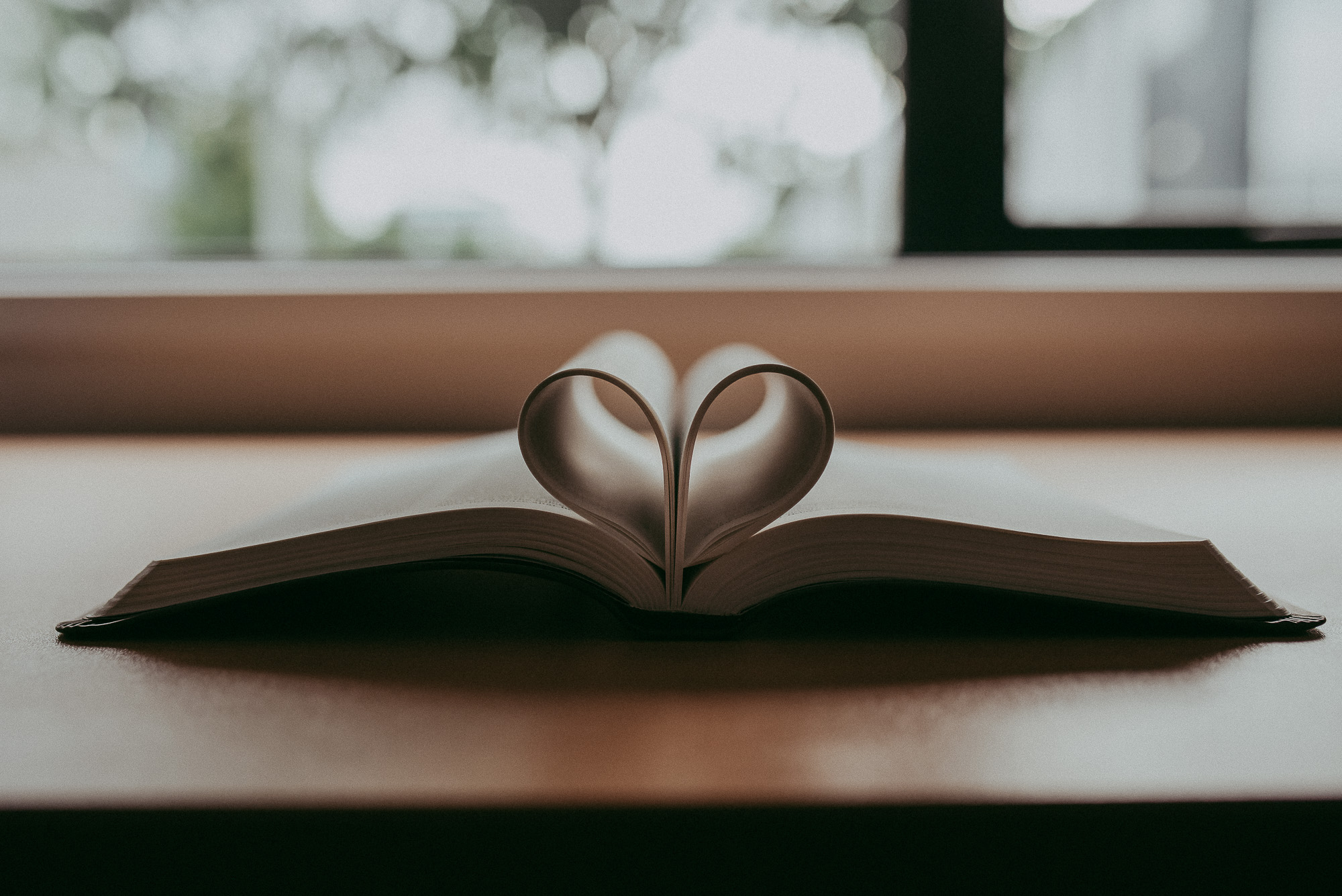 paper heart project | One Blog Circle | Auckland family-wedding photographer