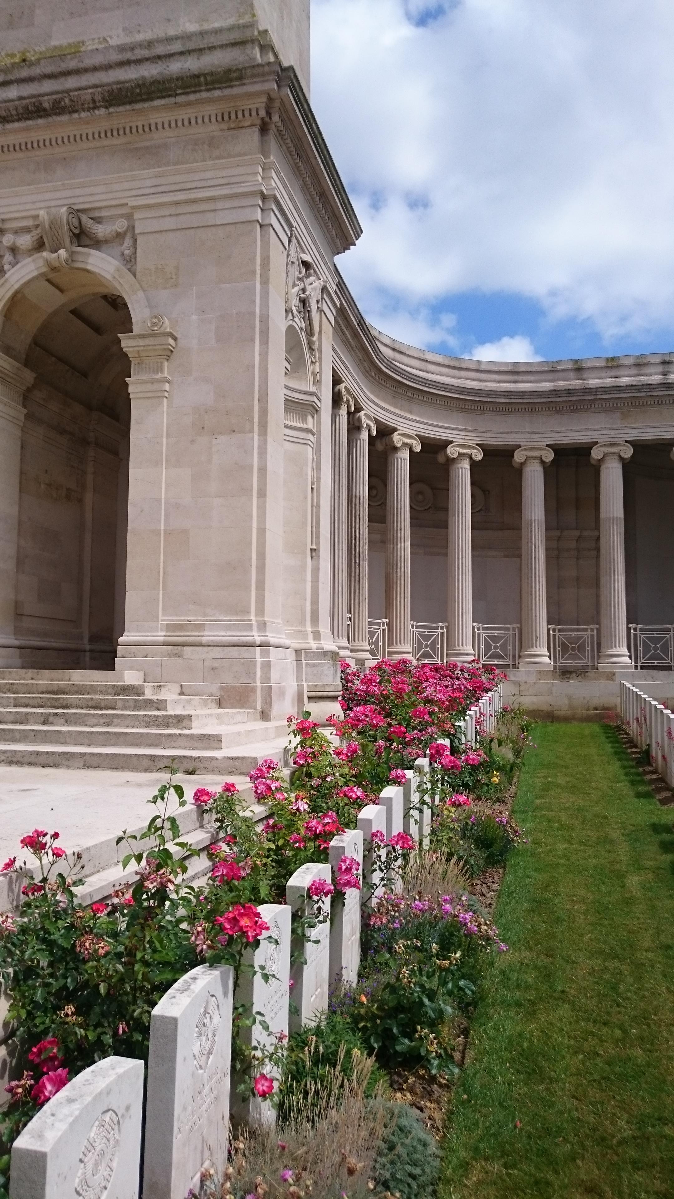 Roses at Vis-en-Artois