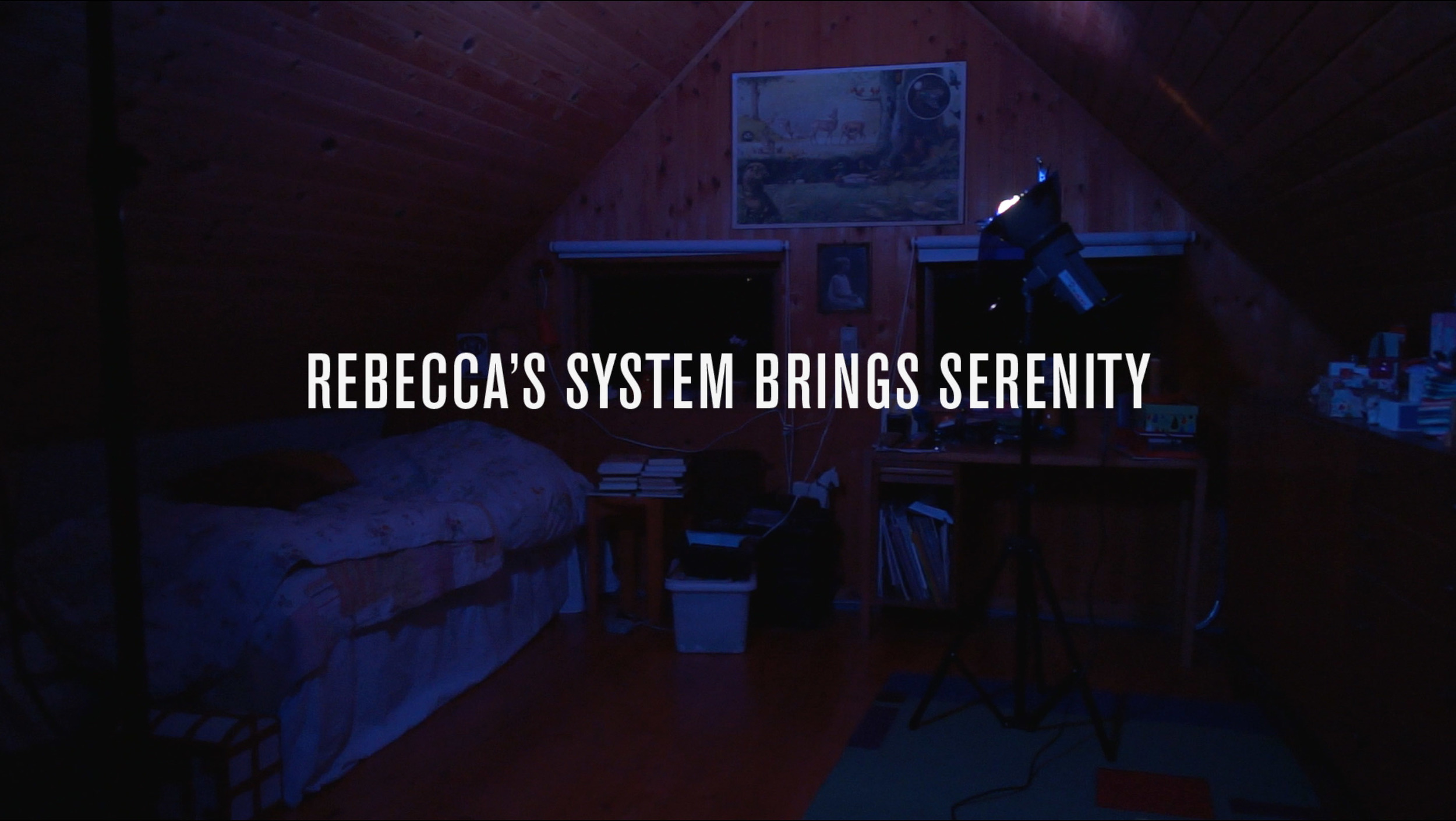 "Rebecca's System. ""Rebecca's System"", HD Video, 21'00"", Still from video, 2016"