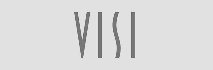 VISI Logo
