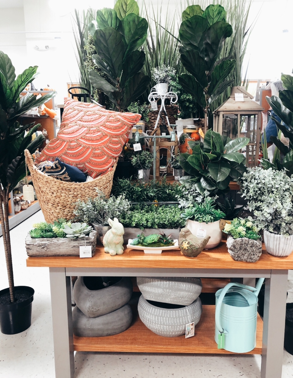 How cute is this home display at TJ MAXX?