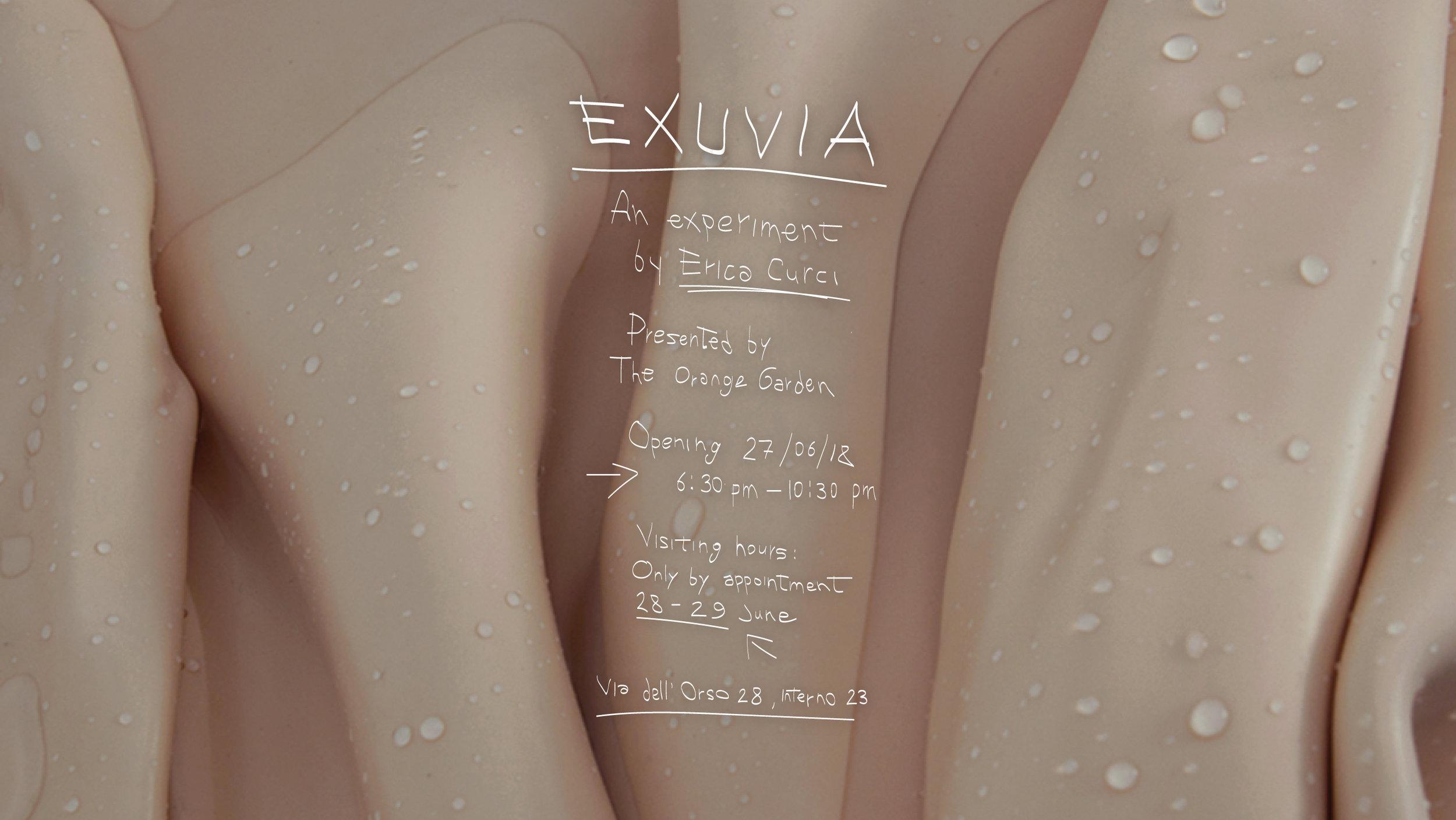 EXUVIA-LAST-ONE.jpg