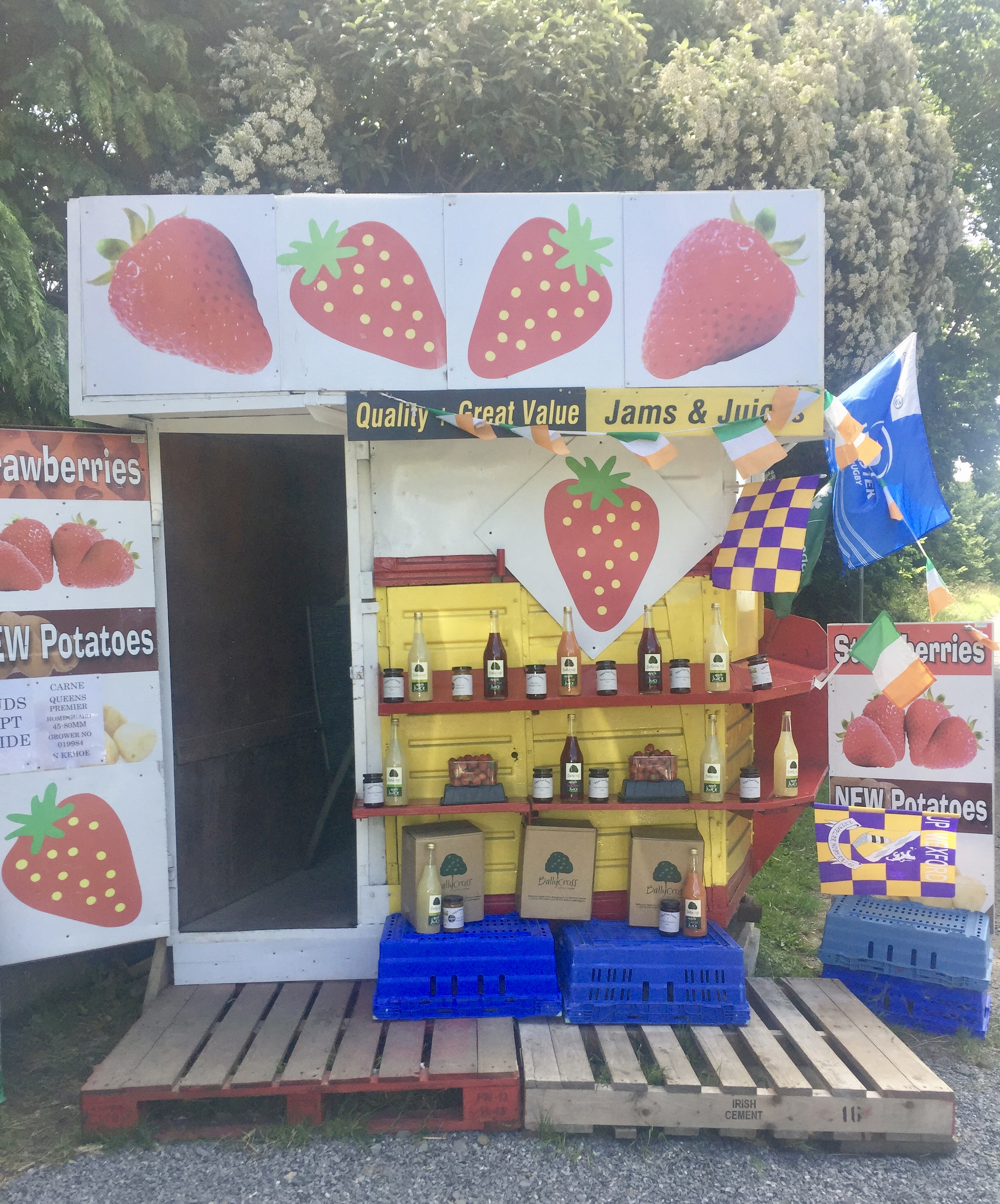 Wexford Strawberries
