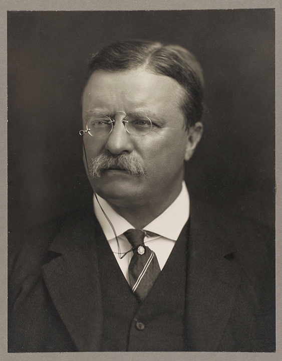 President Theodore Roosevelt, Photograph by Pach Brothers Studio, New York, c. August 15, 1913