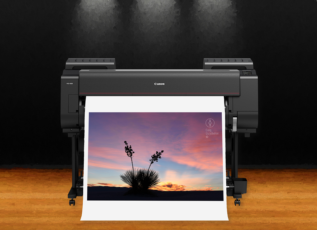 Canon imagePROGRAF PRO-4000 with White Sands photograph