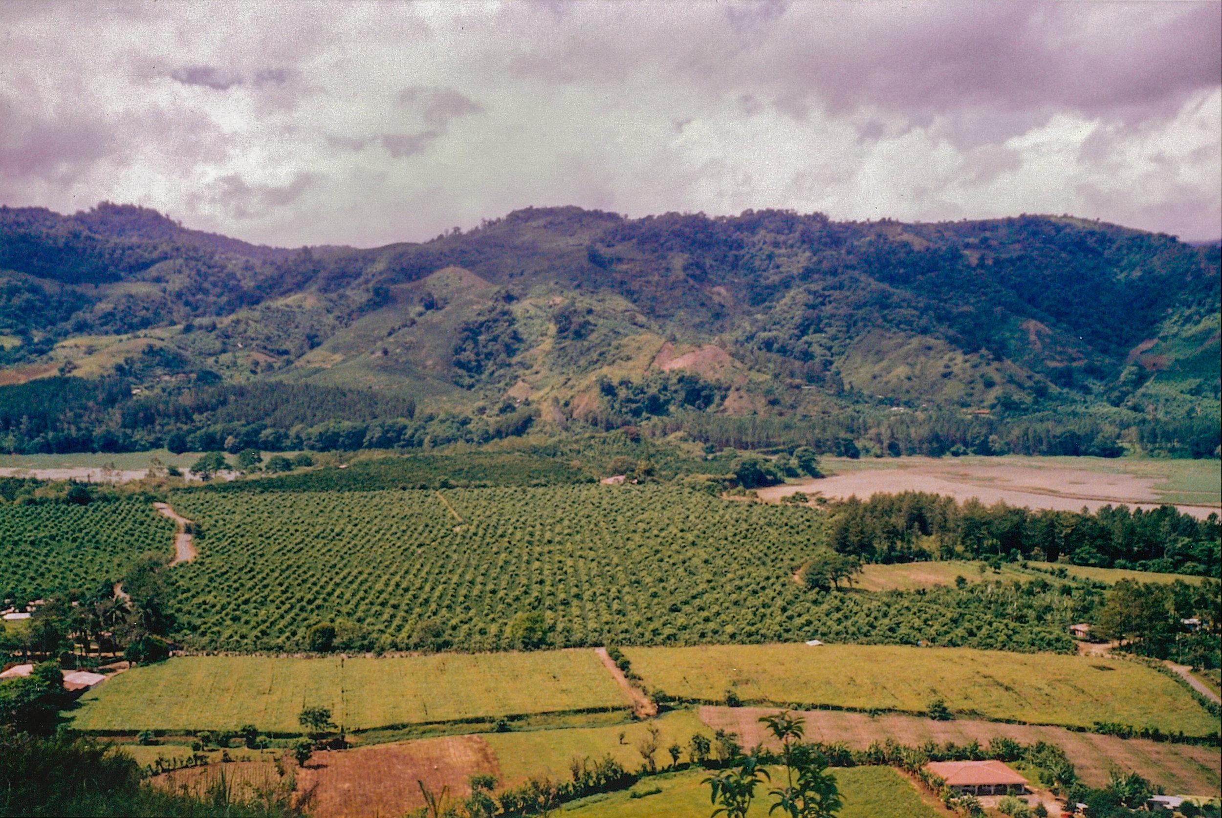 Costa Rica 1999 (1 of 9).jpg