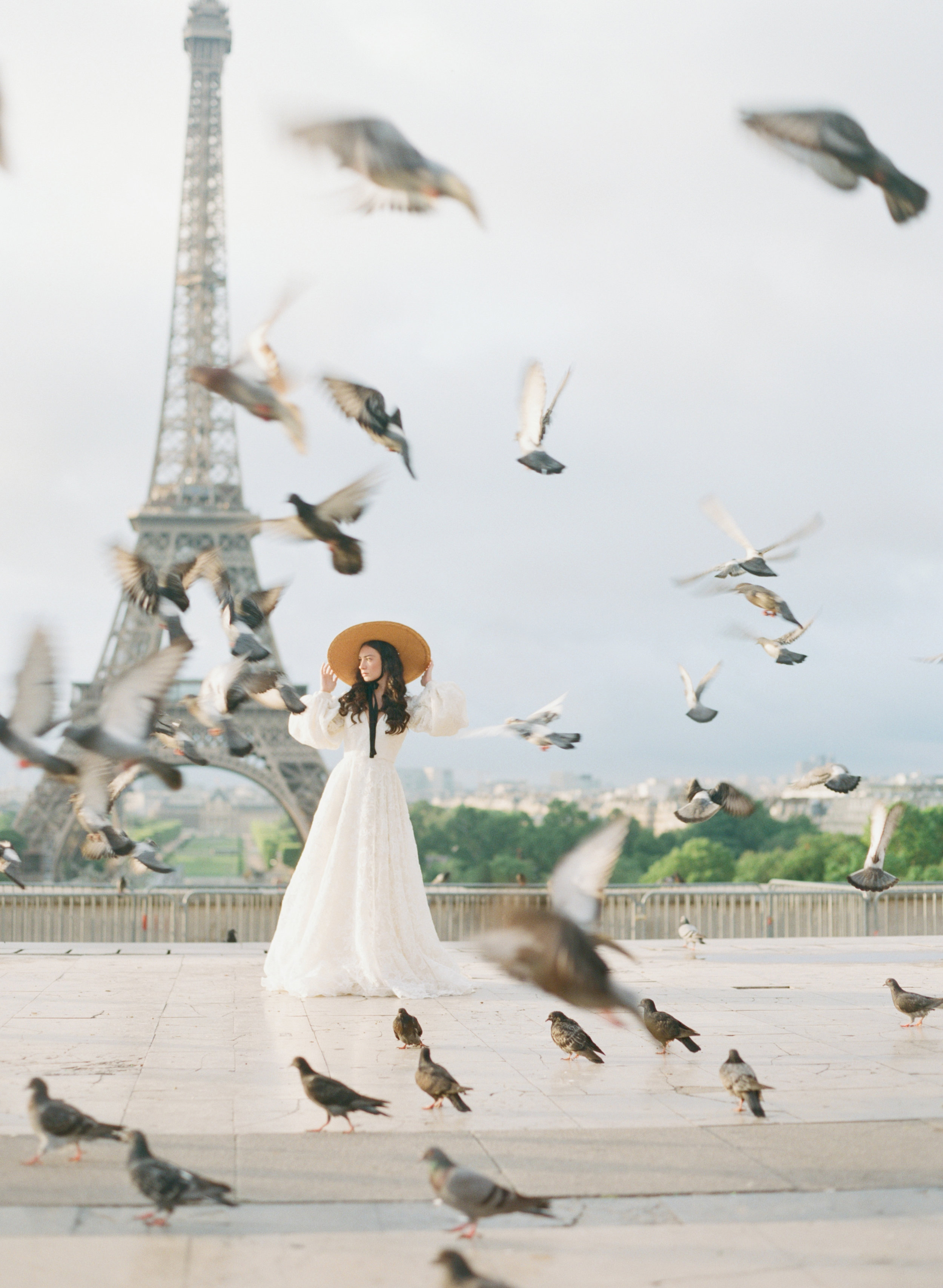 Paris, Birds, Eiffel Tower