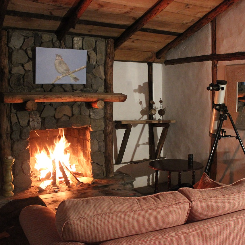 fireplace-home-sq.png